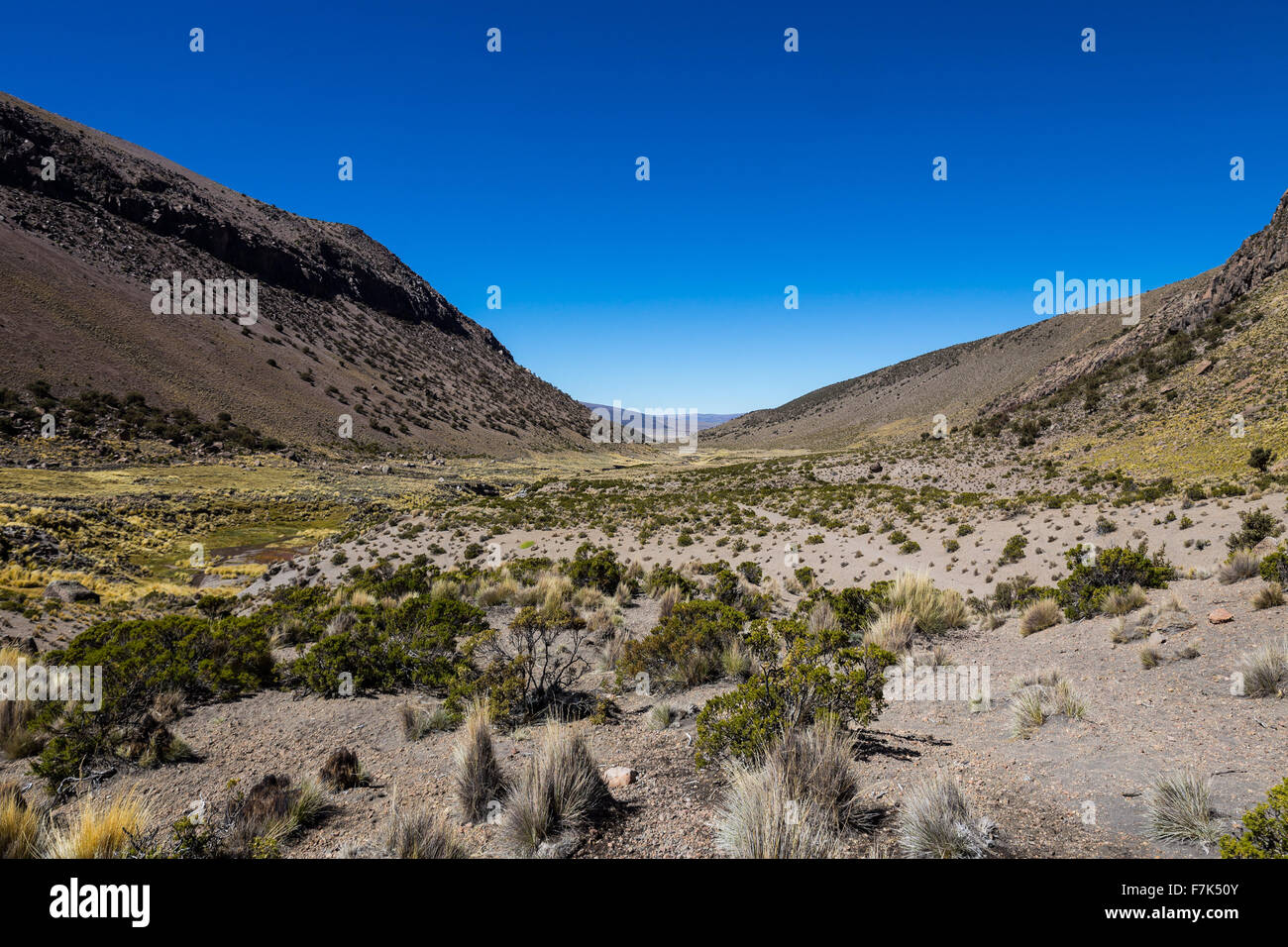 Landscape of an arid valley in the Andean highlands of Latin America - Stock Image