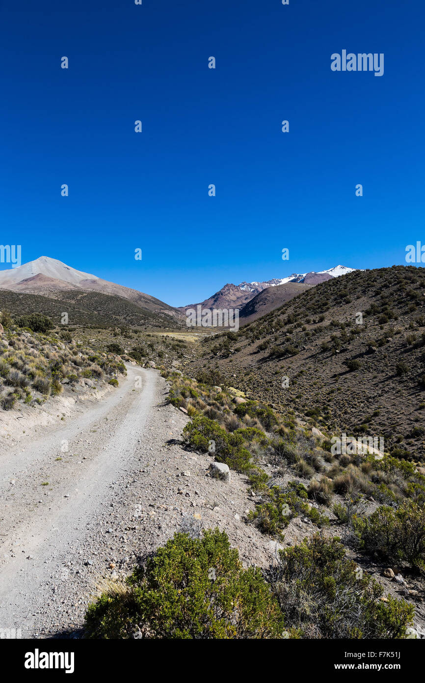 Small path in the Andes. The weather Andean Highlands Puna grassland ecoregion, of the montane grasslands and shrublands - Stock Image