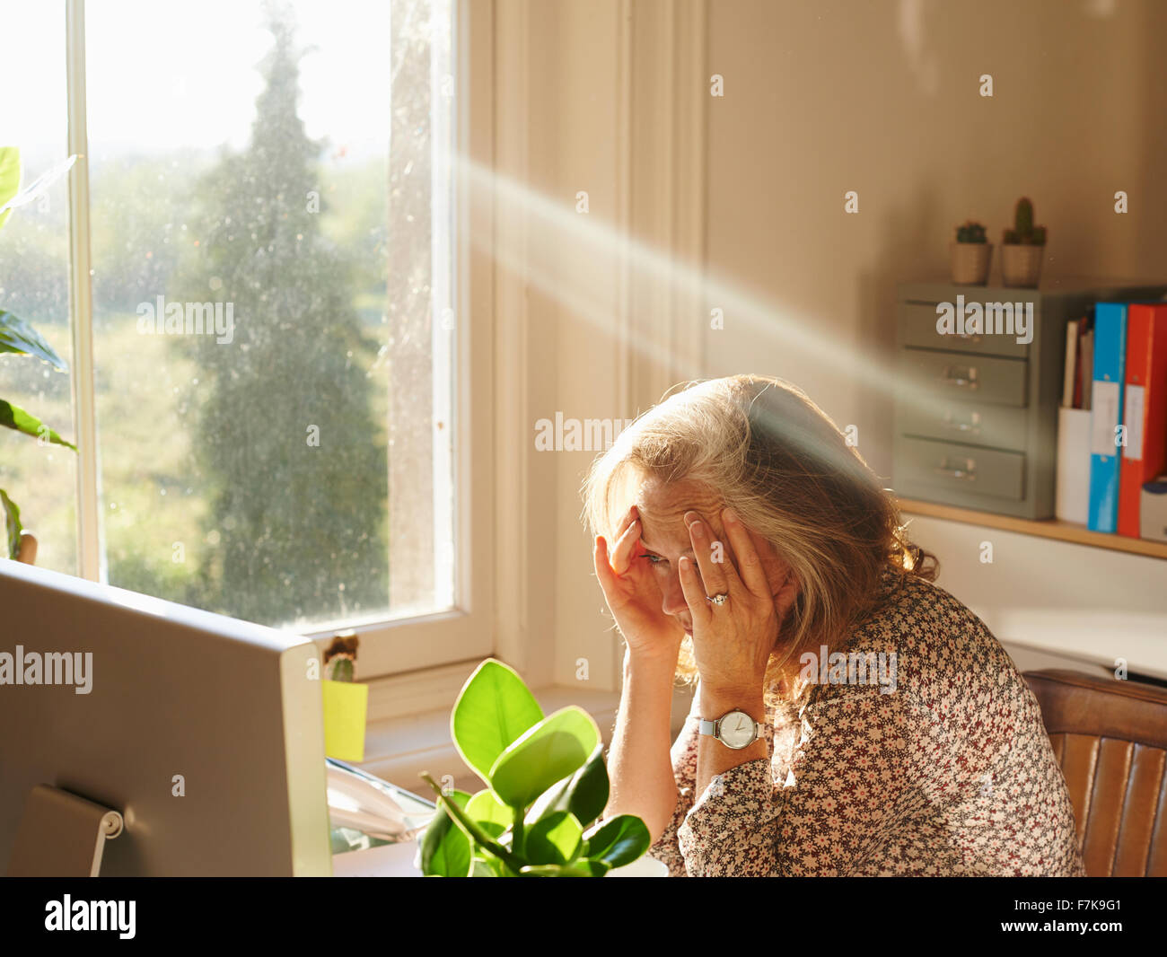 Stressed woman using computer in sunny home office - Stock Image