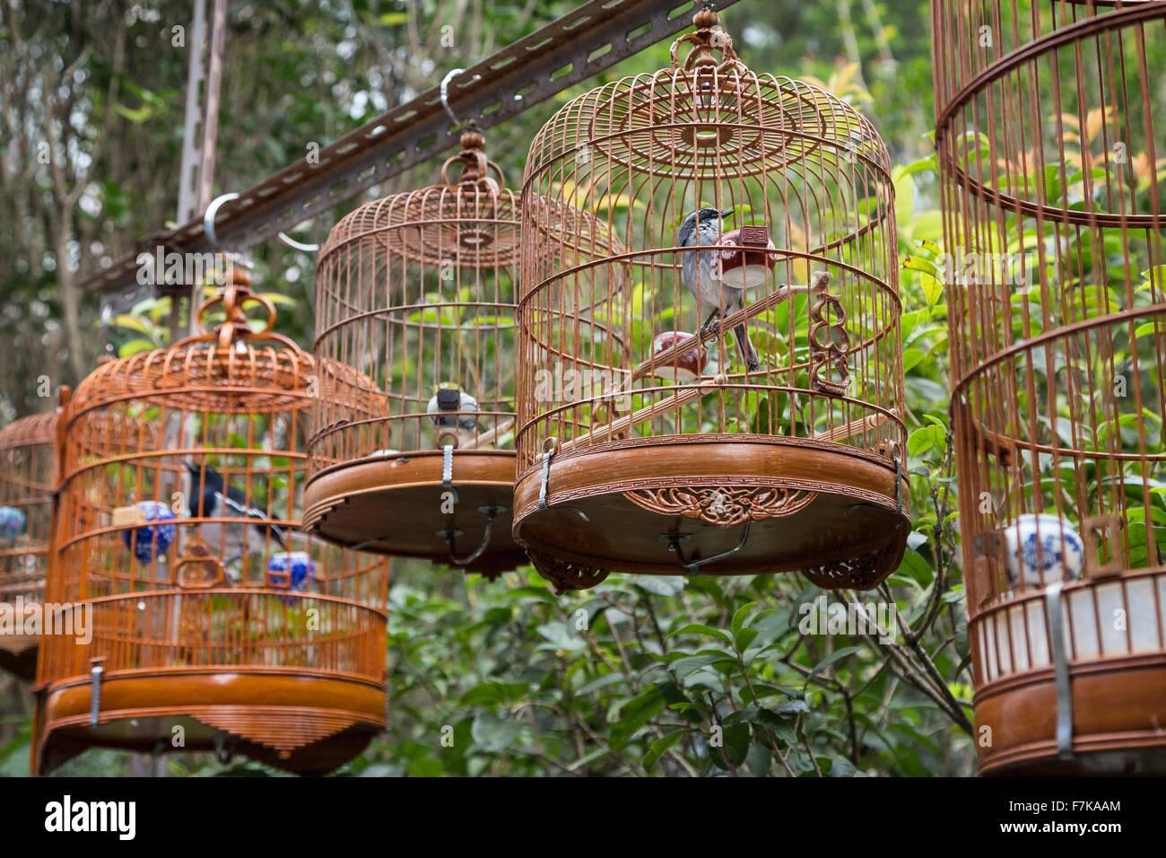 The Birdcage Hong Kong Stock Photos & The Birdcage Hong Kong Stock ...