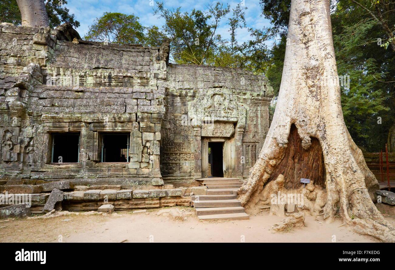 Ruins of Ta Prohm Temple, Angkor, Cambodia, Asia - Stock Image