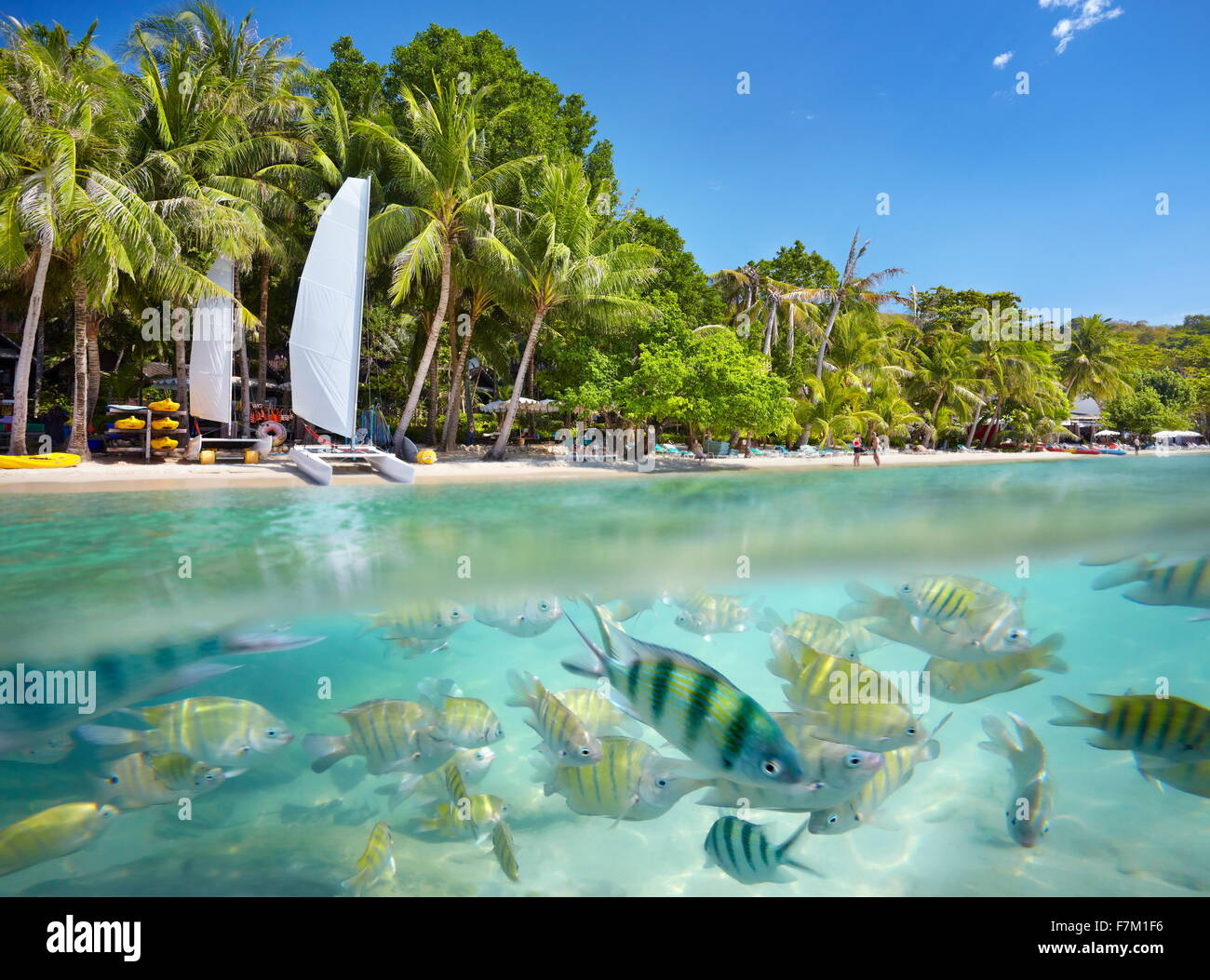 Thailand beach - tropical scenery at Ko Samet Island, Thailand, Asia - Stock Image