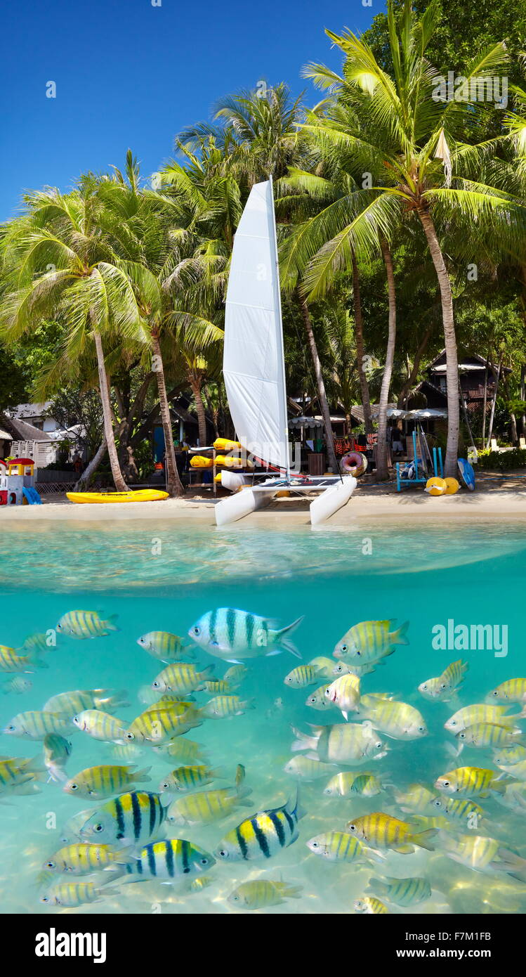 Thailand - tropical beach of Ko Samet Island with underwater view, Thailand, Asia - Stock Image