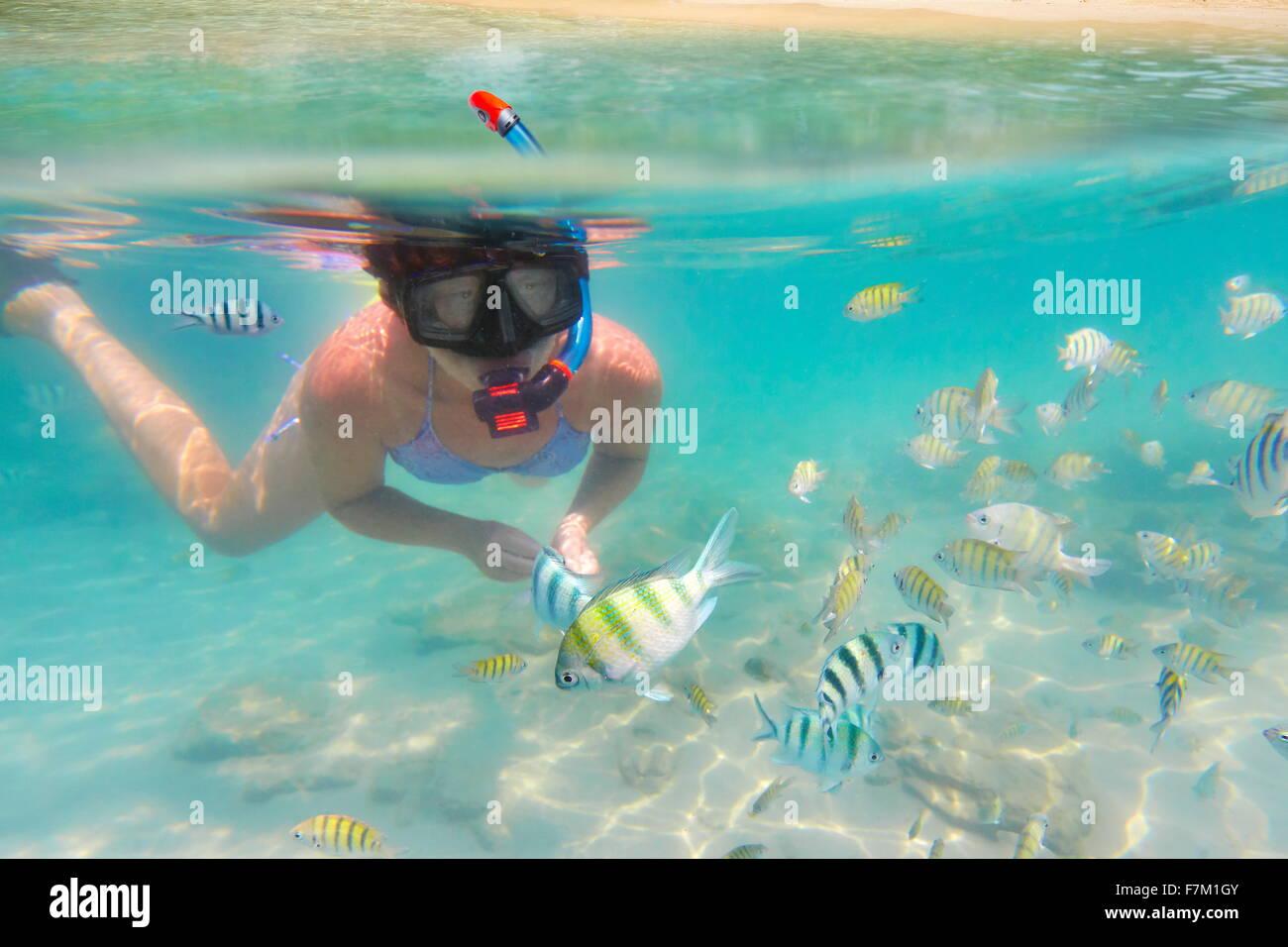 Underwater sea view, snorkeling woman and fish, Ko Samet Island, Thailand, Asia - Stock Image