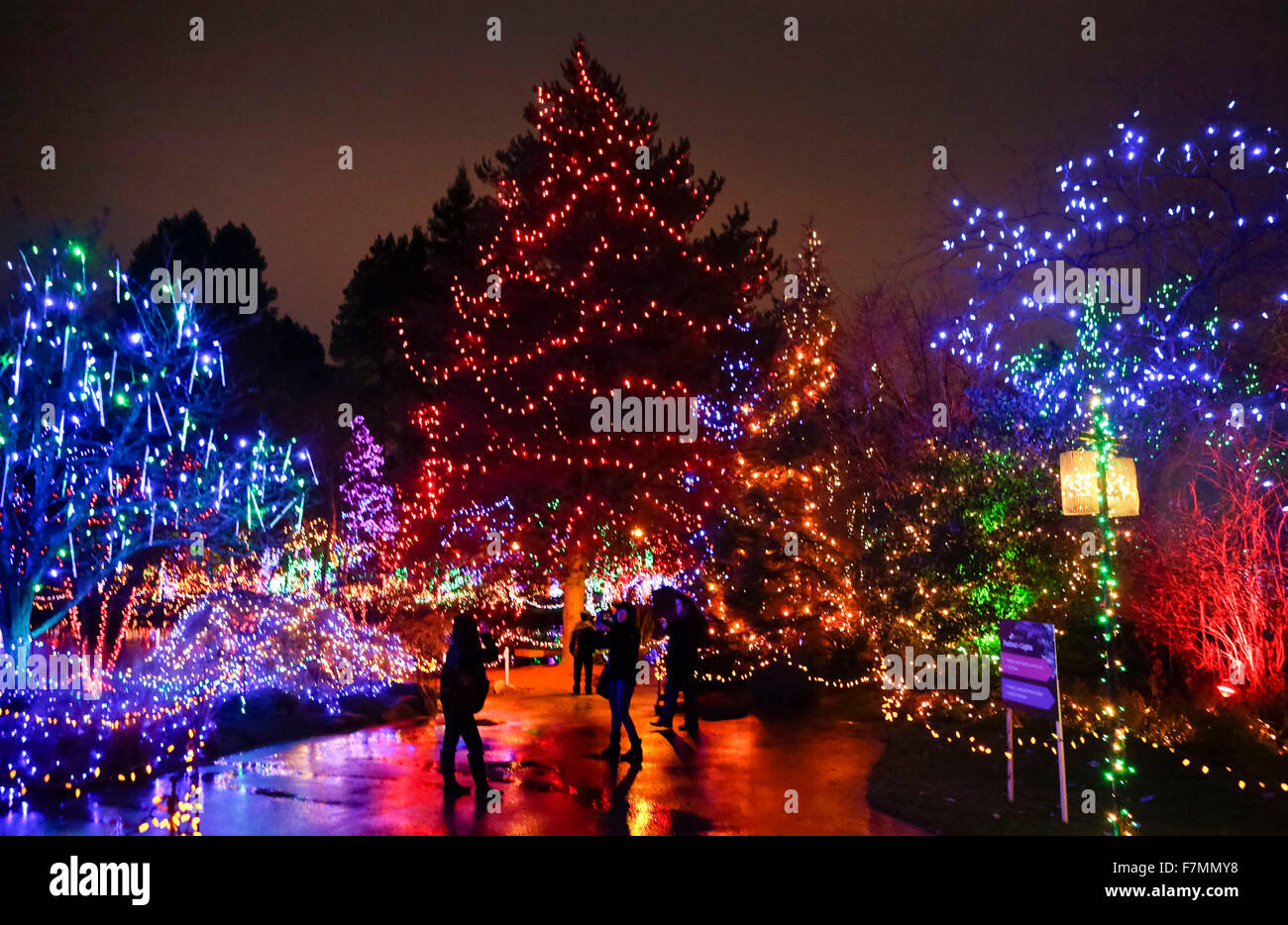 Vancouver, Canada. 1st Dec, 2015. Residents enjoy different ...