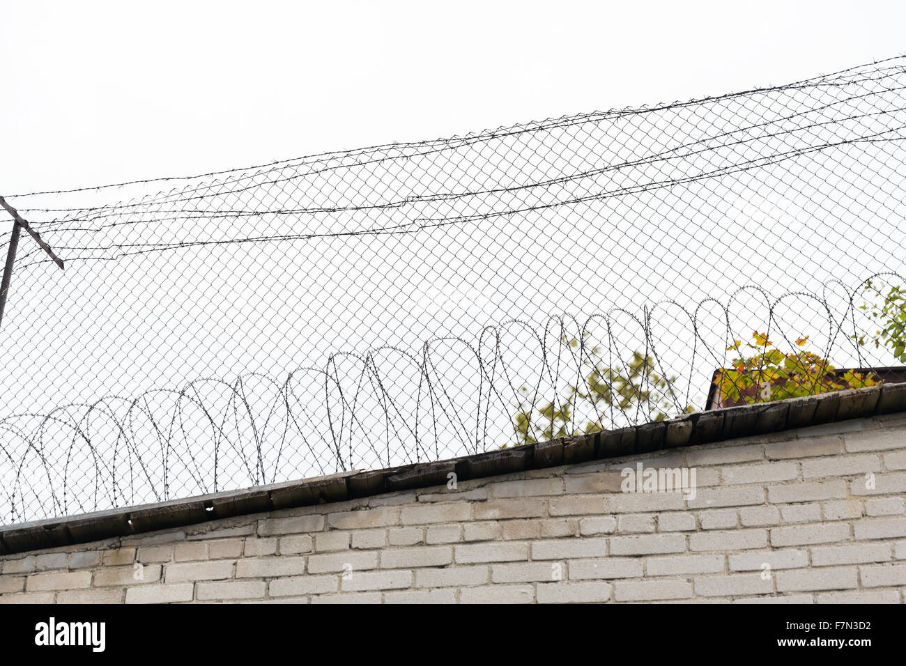 barb wire fence over gray sky Stock Photo