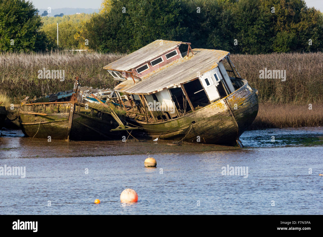 Rotting Wooden Wrecks in the Mud at Topsham, Devon, England - Stock Image
