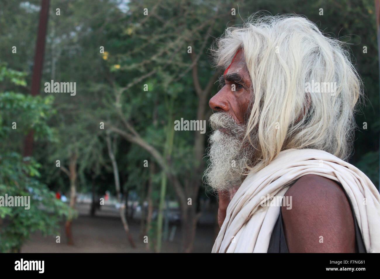 White hair Sadhu Kumbh Mela, Nasik, Maharashtra, India - Stock Image