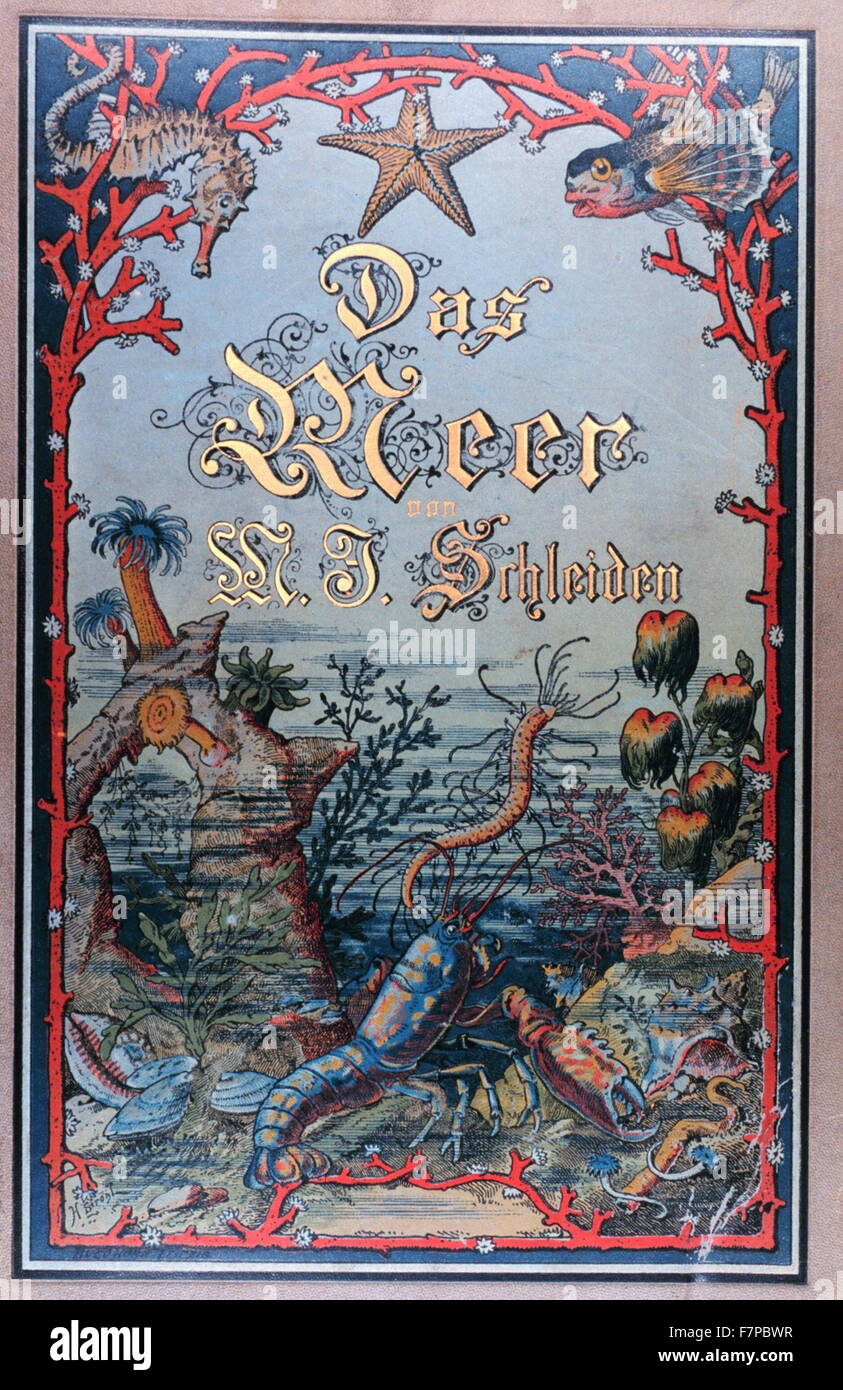 Illustrated front cover from (The Sea) 'Das Meer' by M.J. Schleiden, 1804-1881. - Stock Image