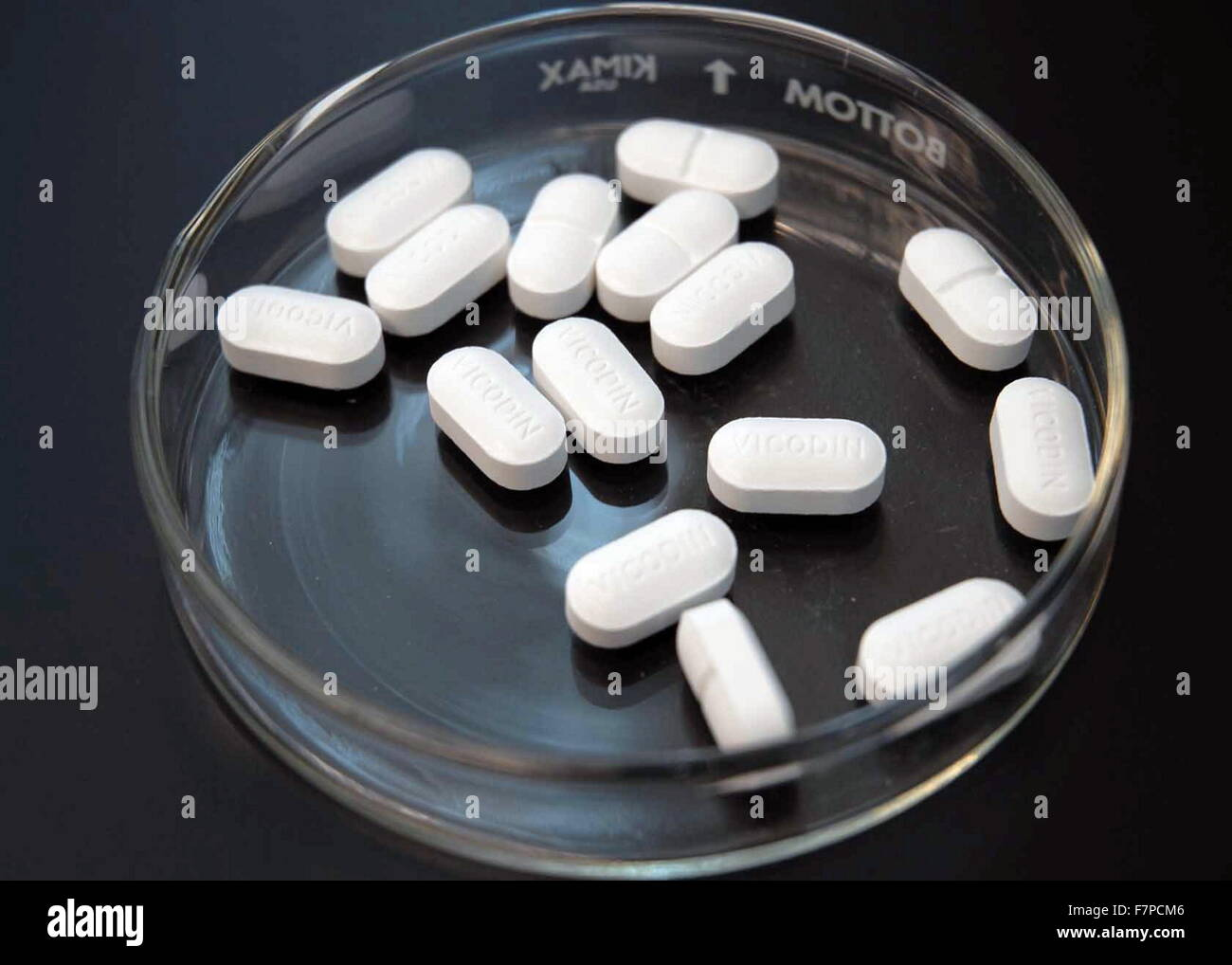Hydrocodone a semi-synthetic opioid synthesized from codeine, one of the opioid alkaloids found in the opium poppy. - Stock Image