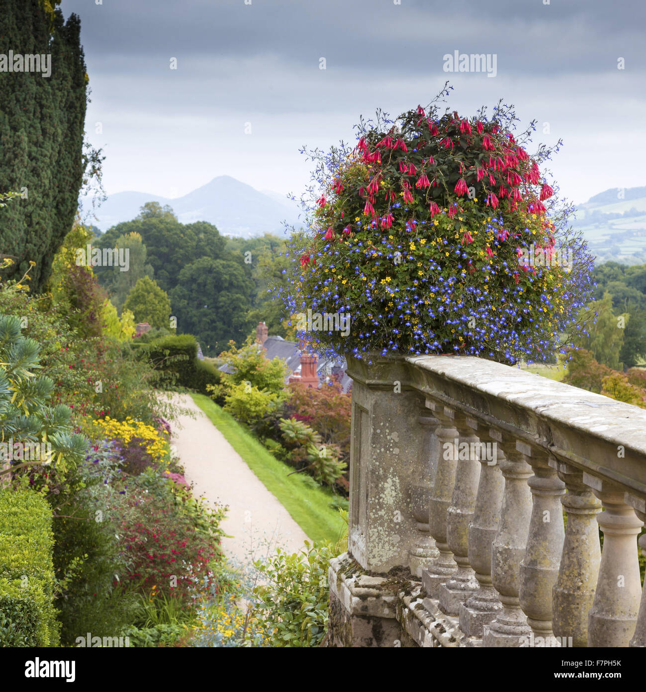 View from the flower-filled garden terraces at Powis Castle and Garden, Powys, Wales, in September. - Stock Image