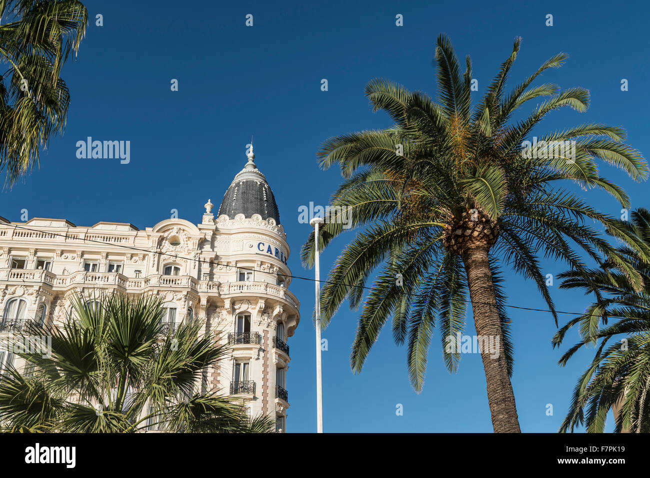 Carlton, Hotel, Facade, Palm tree, Cannes, - Stock Image