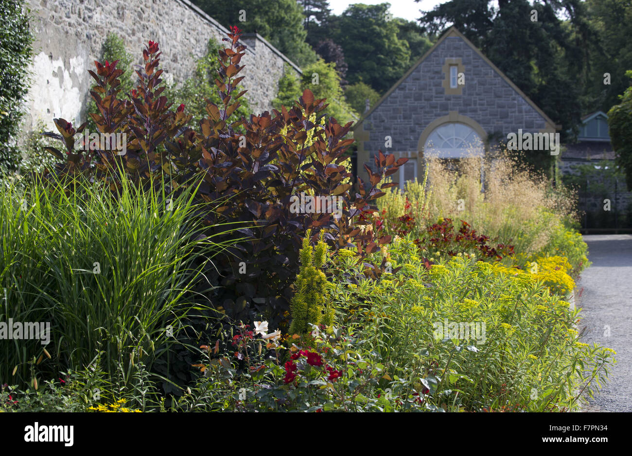 Plants growing in July at Bodnant Garden, Clwyd, Wales. Created by five generations of one family, Bodnant sits Stock Photo