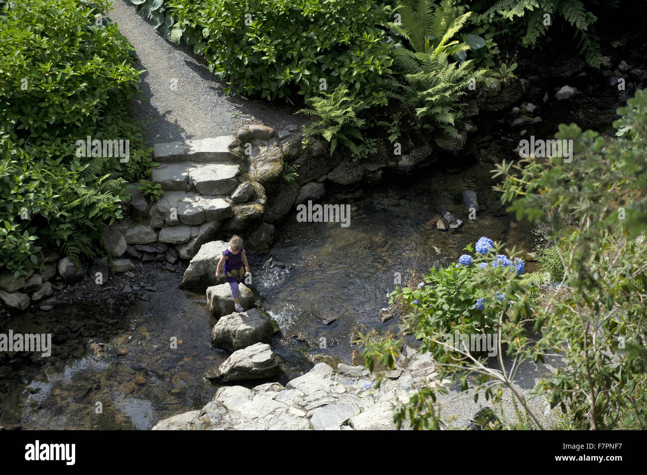 A view over stepping stones at Bodnant Garden, Clwyd, Wales. Created by five generations of one family, Bodnant Stock Photo