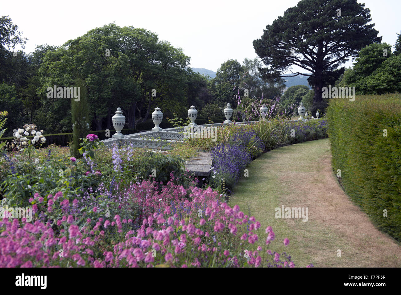 The Lower Rose Terrace in July at Bodnant Garden, Clwyd, Wales. Created by five generations of one family, Bodnant Stock Photo