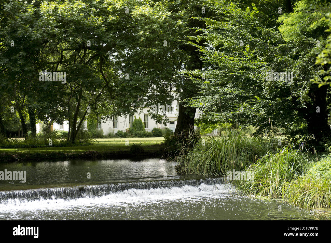 View of the River Wandle and weir, Morden Hall Park, London. Stock Photo