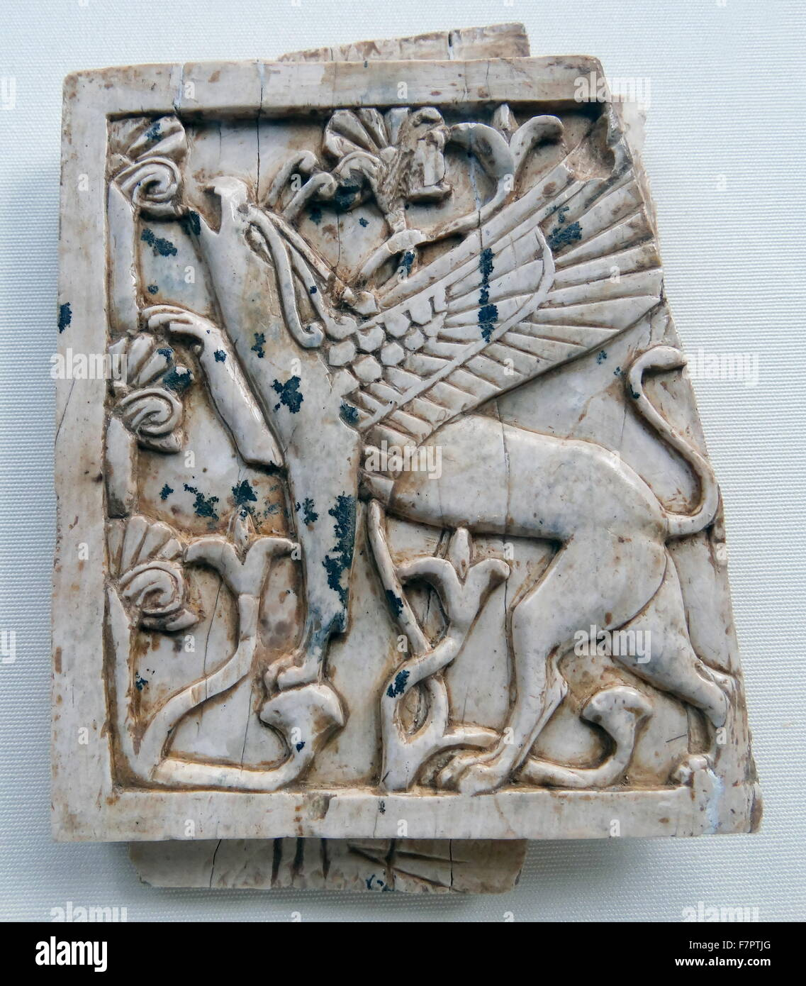 Ivory depicting a griffin eating leaves from a tree - Stock Image