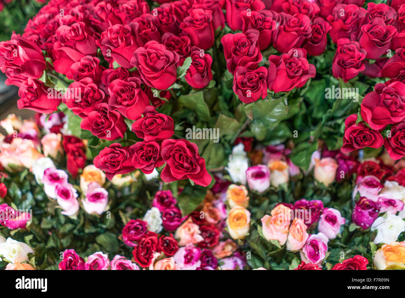 Flowers , Flower Market, Nice, Alpes Maritimes, Provence, French Riviera, Mediterranean, France, Europe - Stock Image