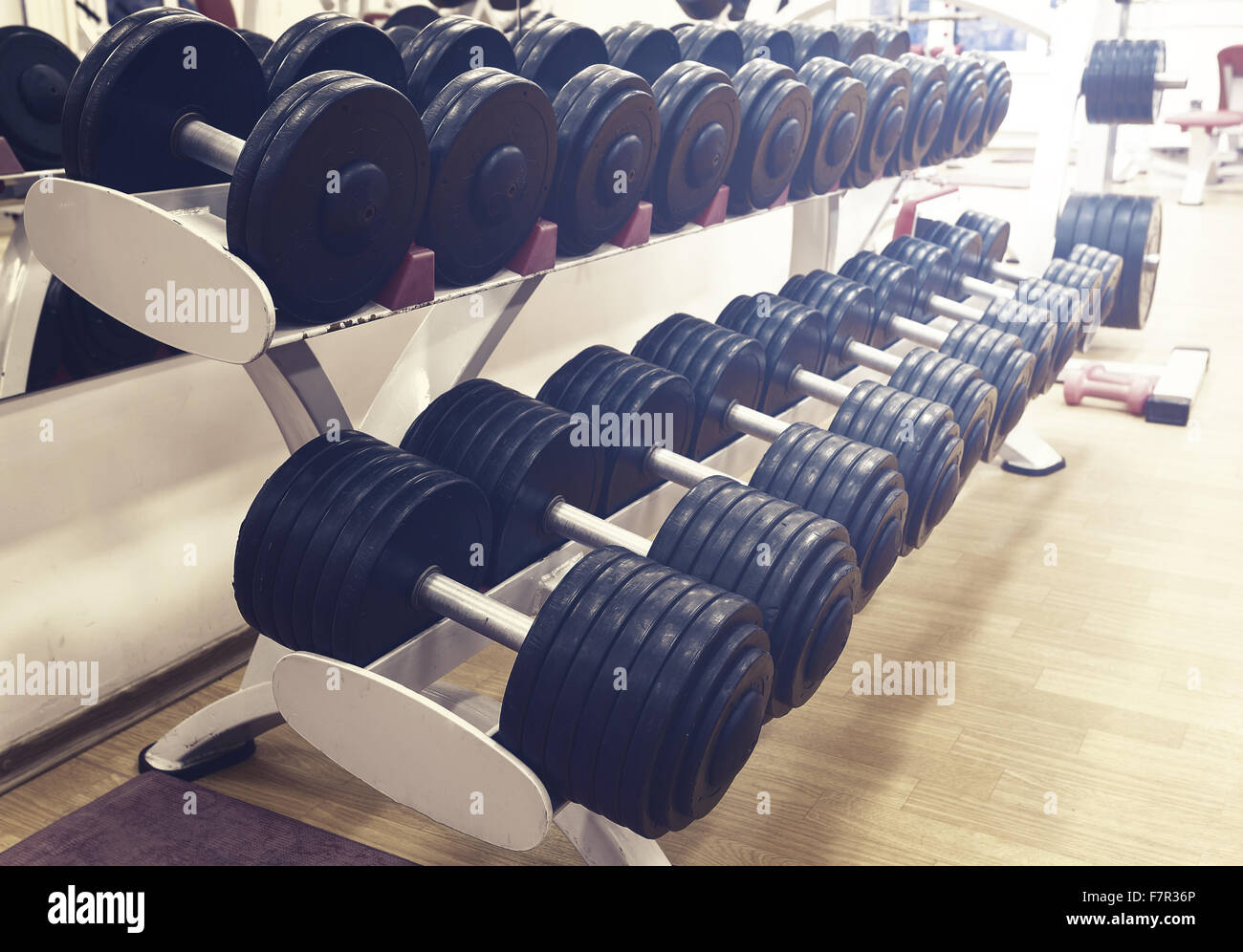 Number dumbbells to workout in the gym - Stock Image