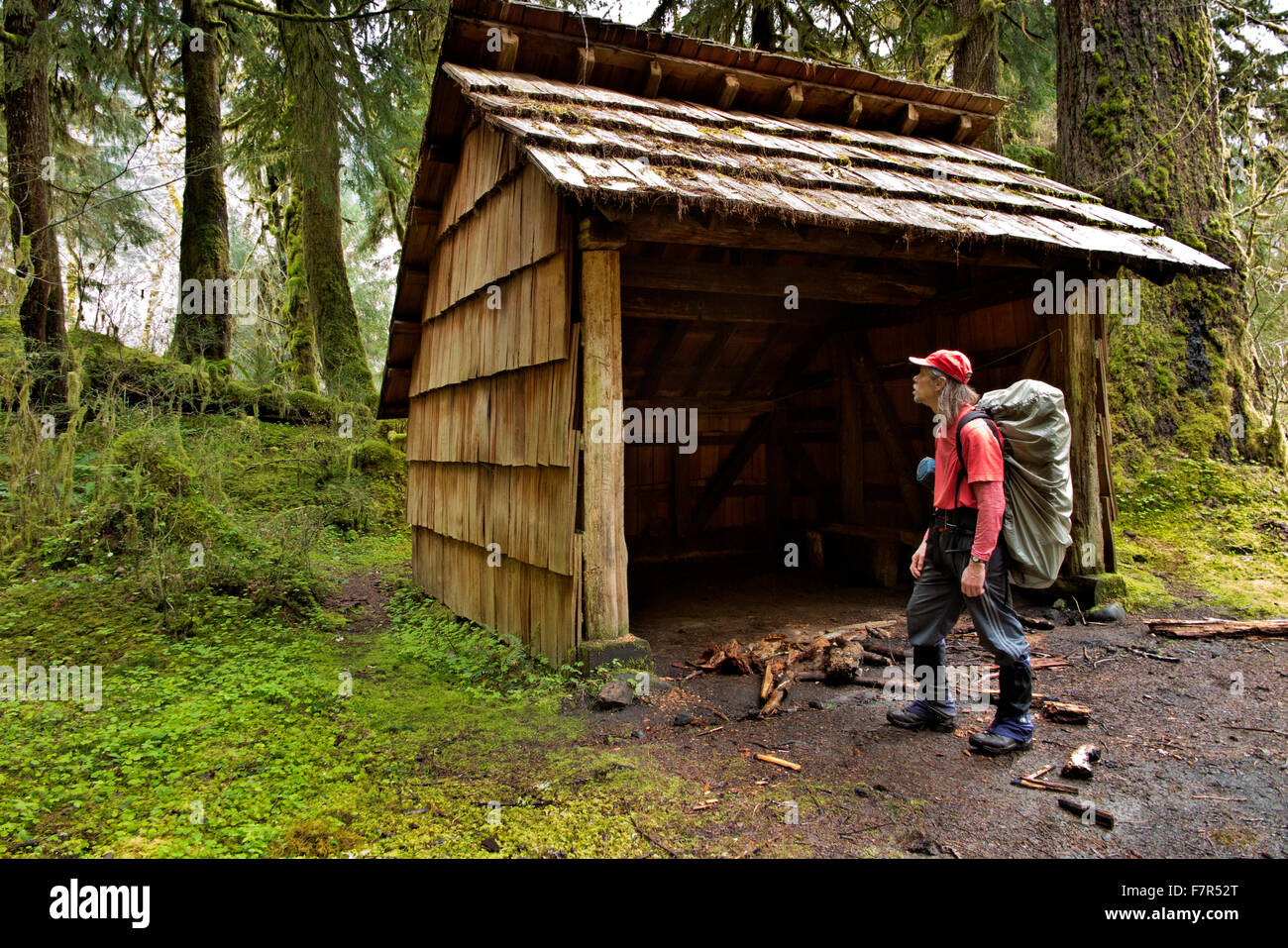 Dark and uninviting, the Happy Four Emergency Shelter is an extremely welcome site for cold and wet hikers on Hoh - Stock Image