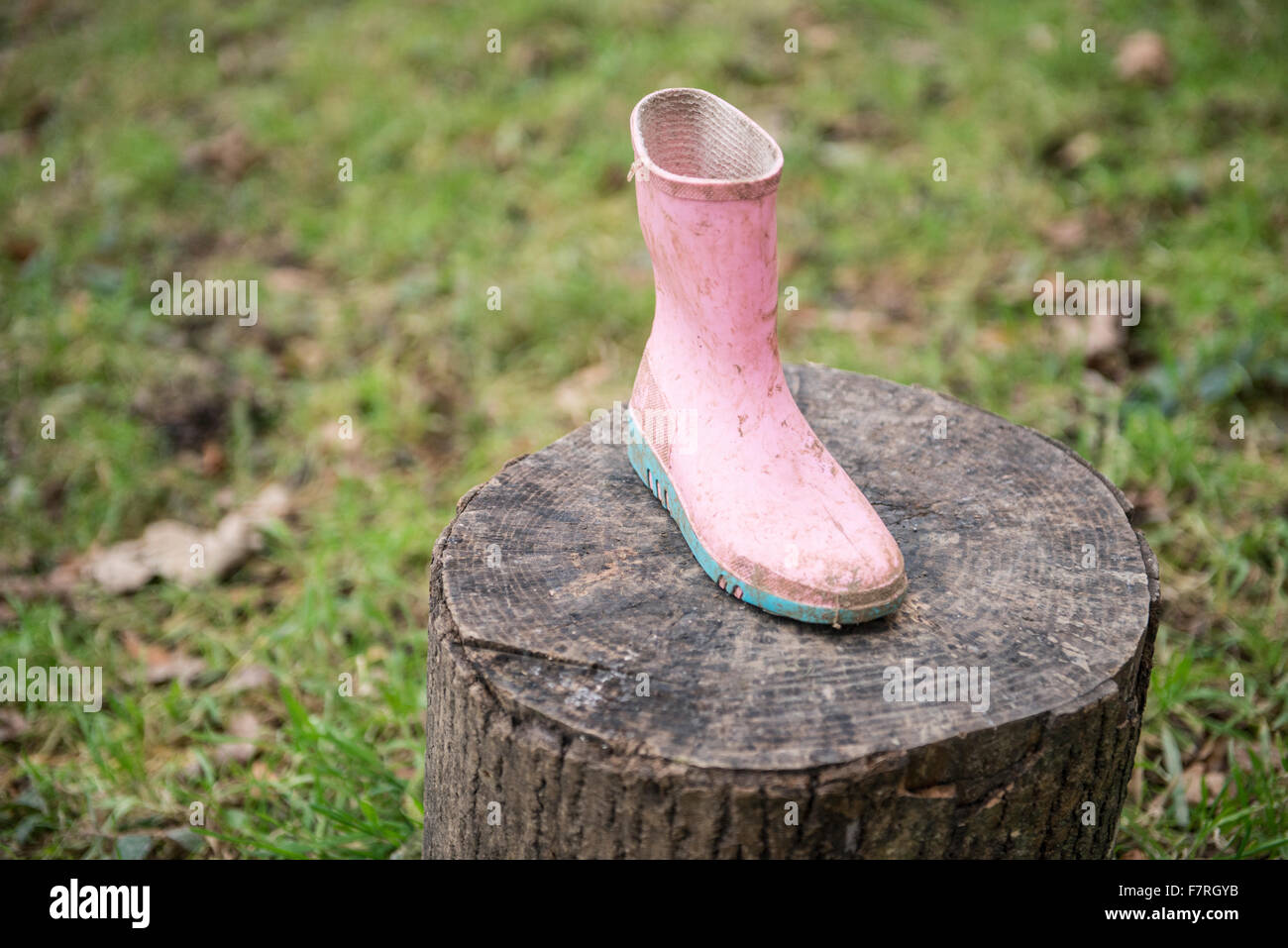 A pink childs welly boot on a log Stock Photo