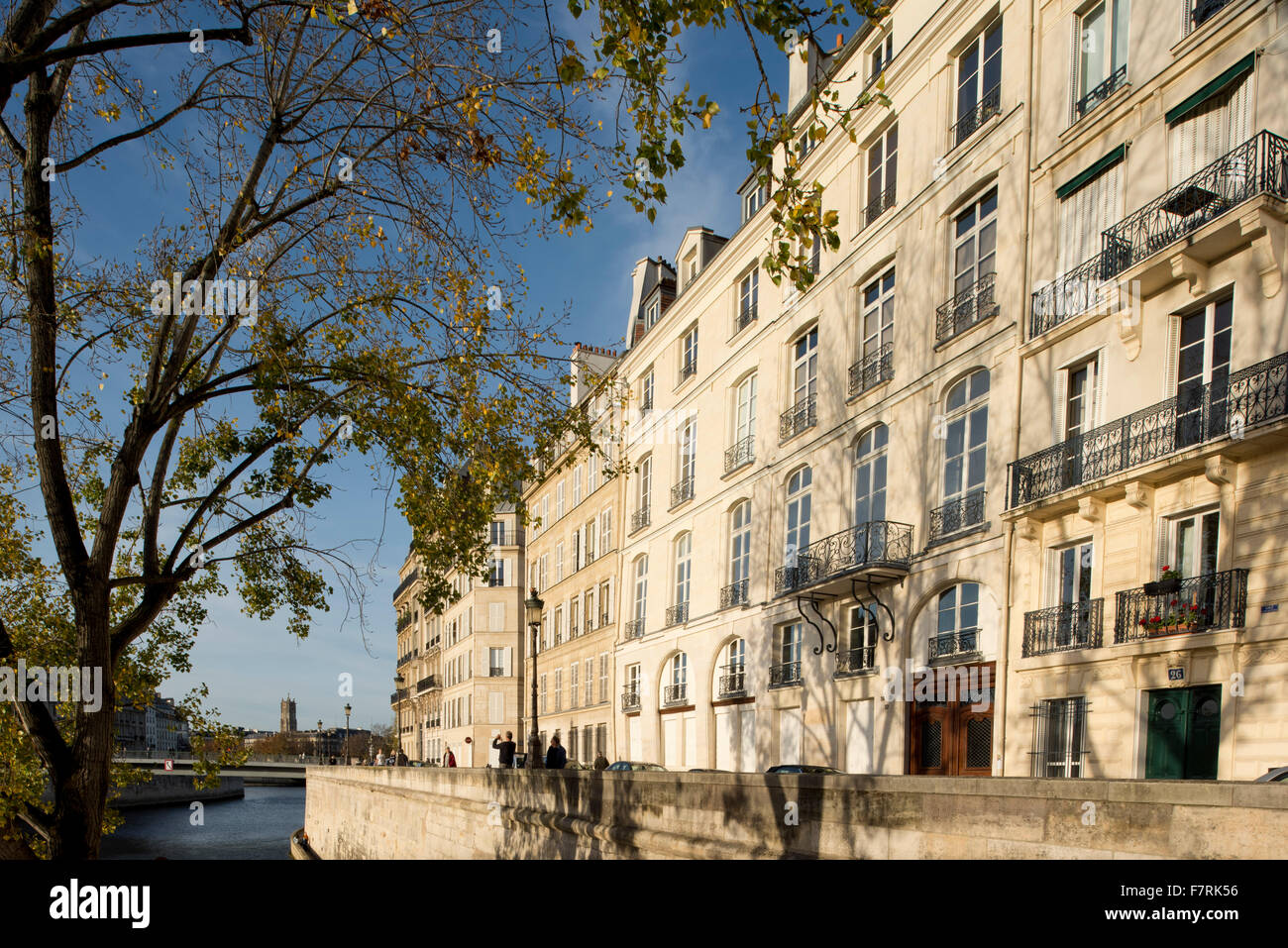Grand old buildings on the Ile St Louis along the Seine looking toward Notre Dame; Paris, France - Stock Image