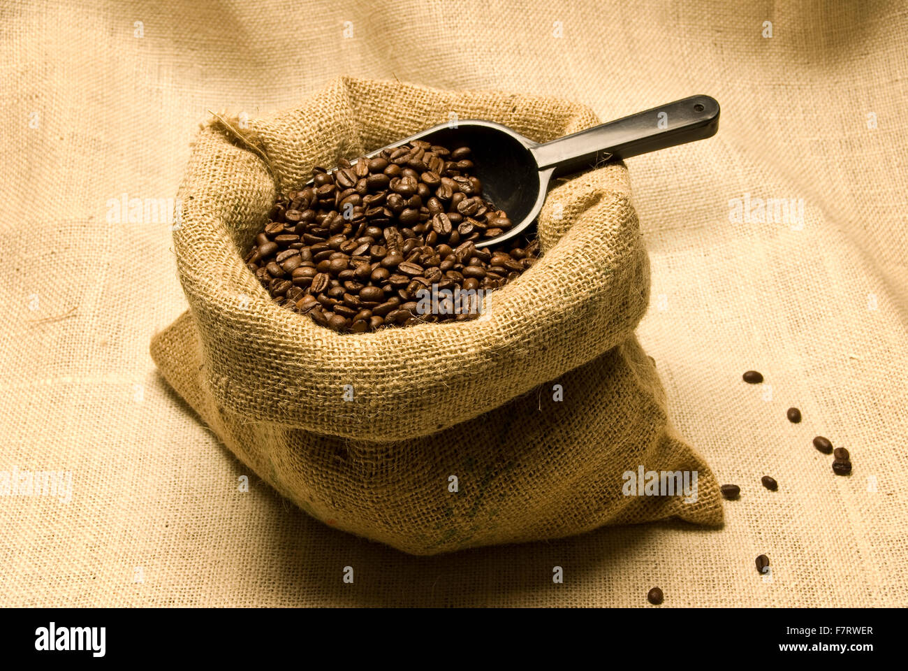 Coffee Beans in Burlap Bag With Scoop In It - Stock Image