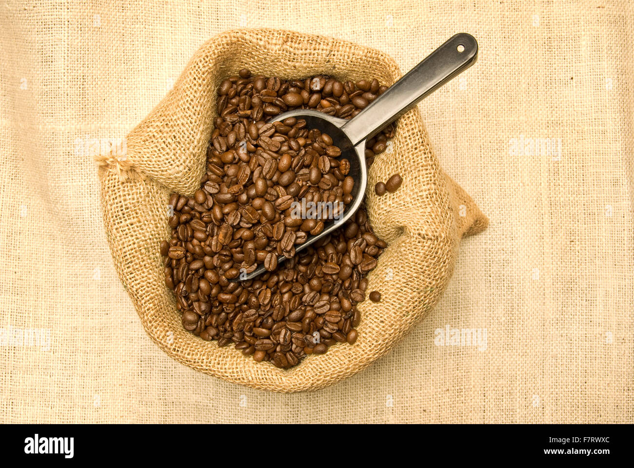 Coffee Beans With Scoop - Stock Image