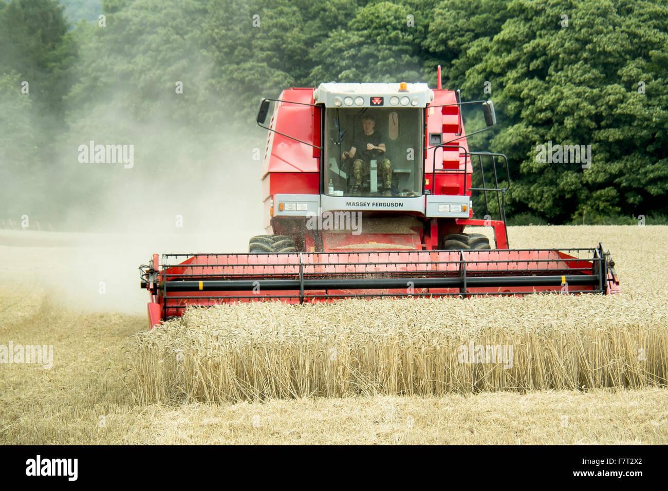 Combined Harvestor Harvesting Wheat, North Yorkshire, England - Stock Image