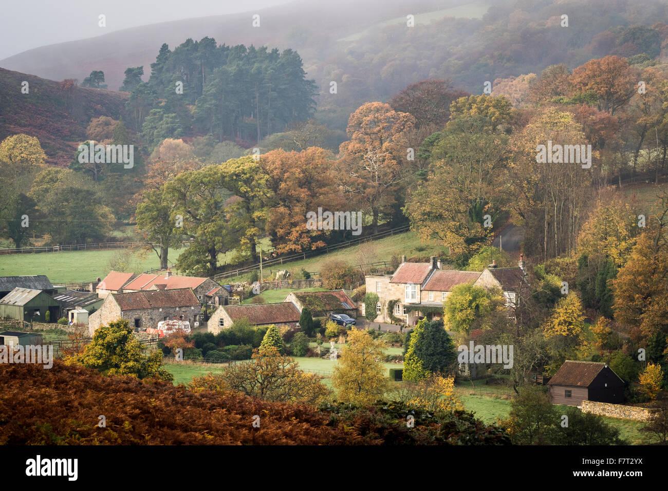 Dibble Bridge Farm in Autumn, near Castleton, North York Moors National Park - Stock Image