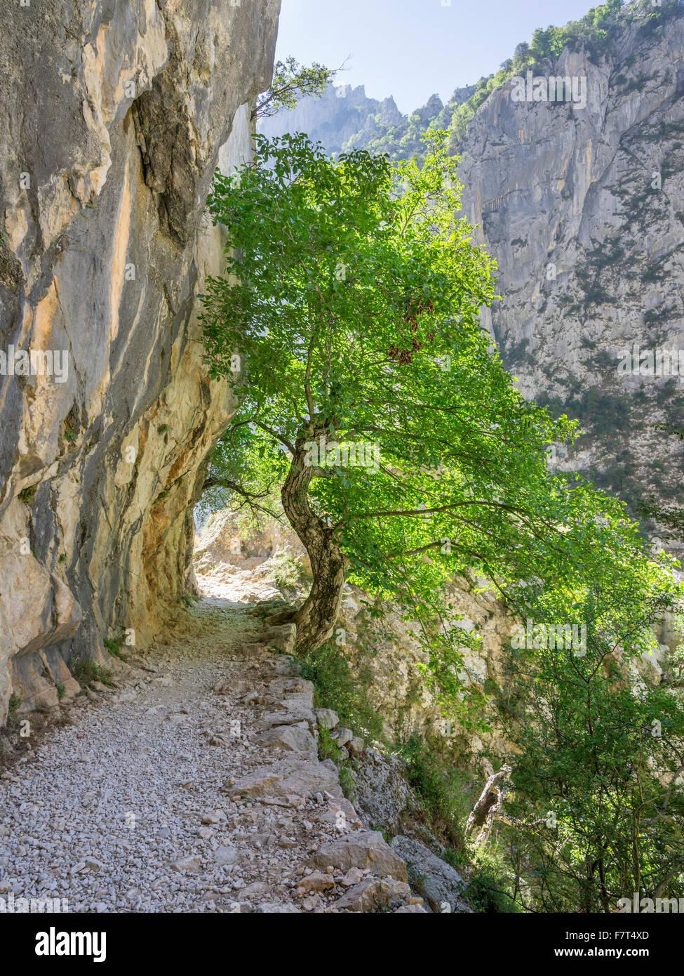 Hiking path through the Cares Gorge, Picos de Europa National Park, Cain, Castilla y León, Spain - Stock Image