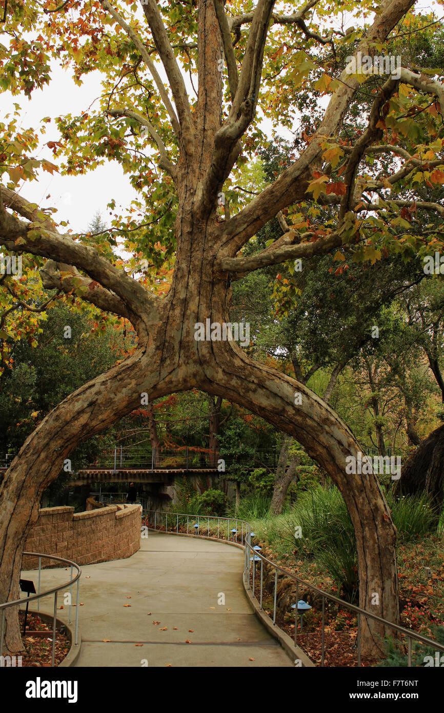 Gilroy Gardens Stock Photos & Gilroy Gardens Stock Images - Alamy