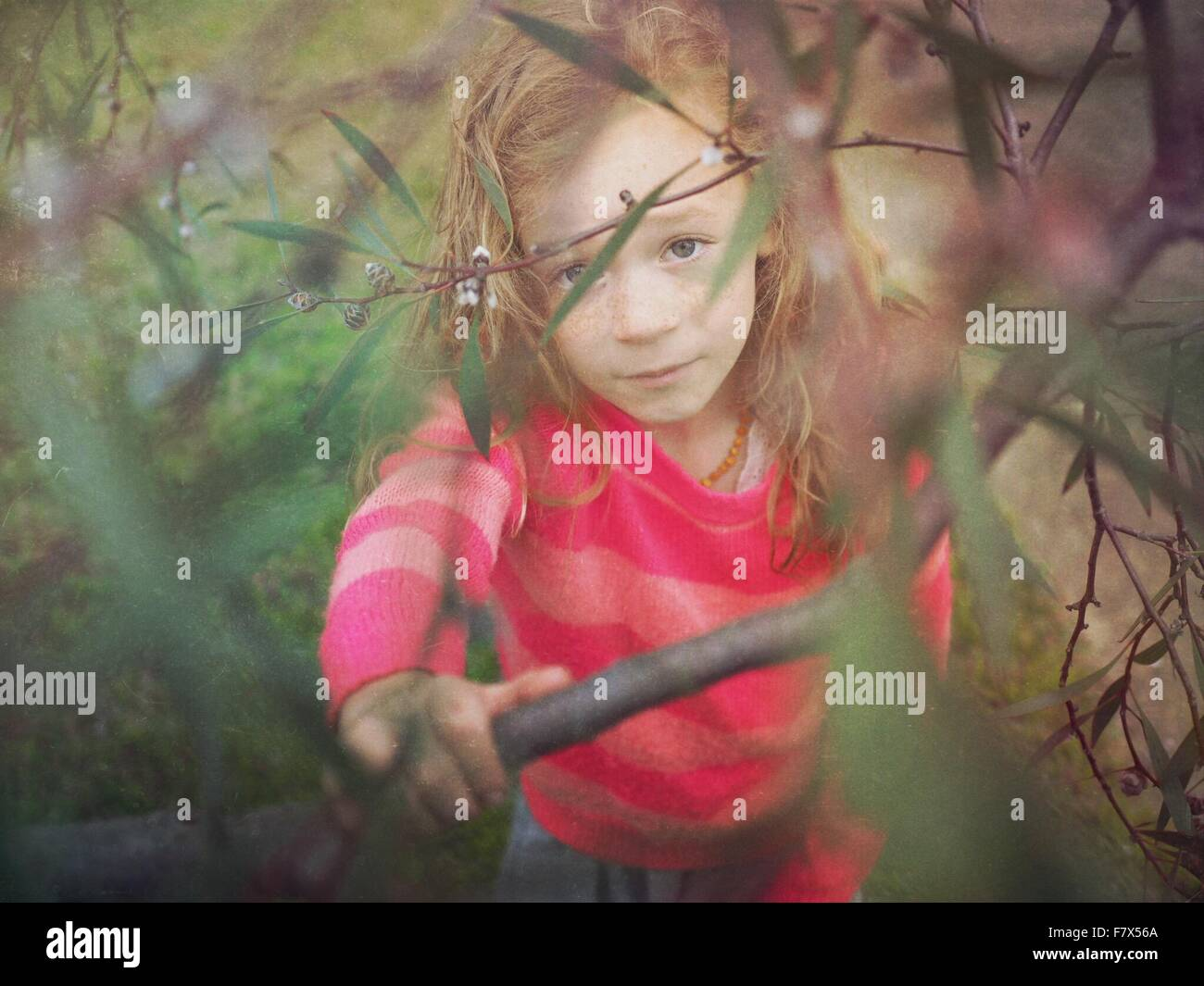 Girl viewed through branches of a tree - Stock Image