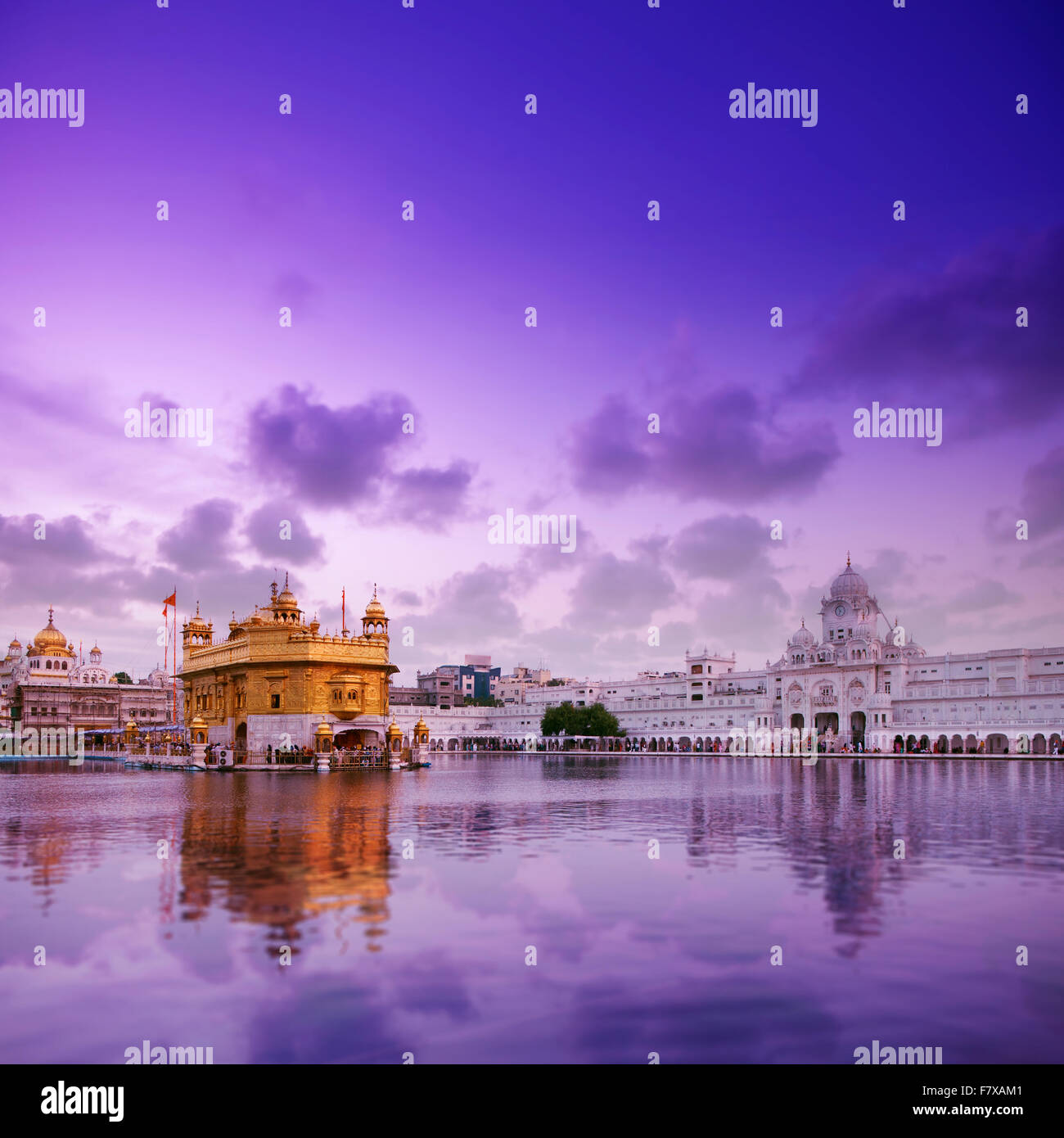 Beautiful Twilight At Golden Temple In Amritsar Punjab India Stock