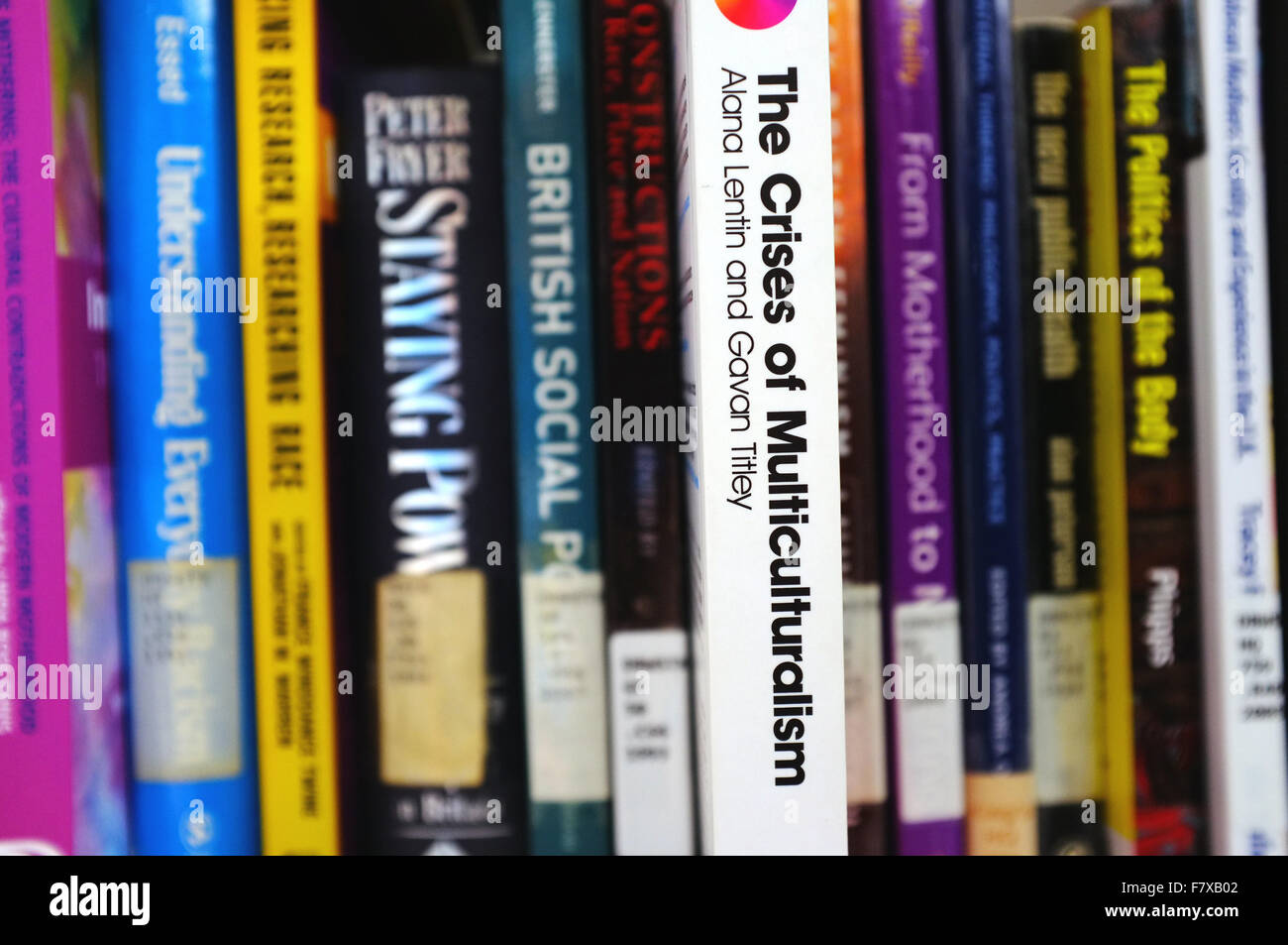 The spine of a Crises of Multiculturalism book pulled out on a bookshelf. - Stock Image