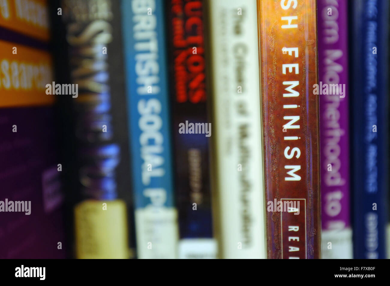 The spine of a Feminism book pulled out on a bookshelf. - Stock Image