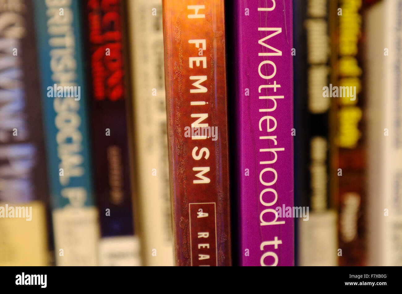 The spines of Feminism and Motherhood books pulled out on a bookshelf. - Stock Image