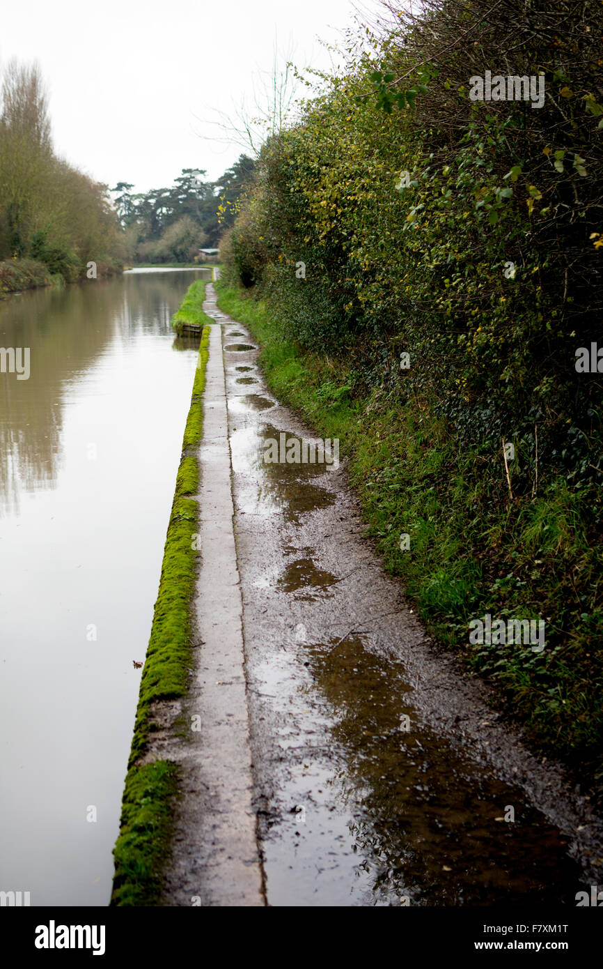 Puddles on Grand Union Canal towpath, Warwick, UK - Stock Image