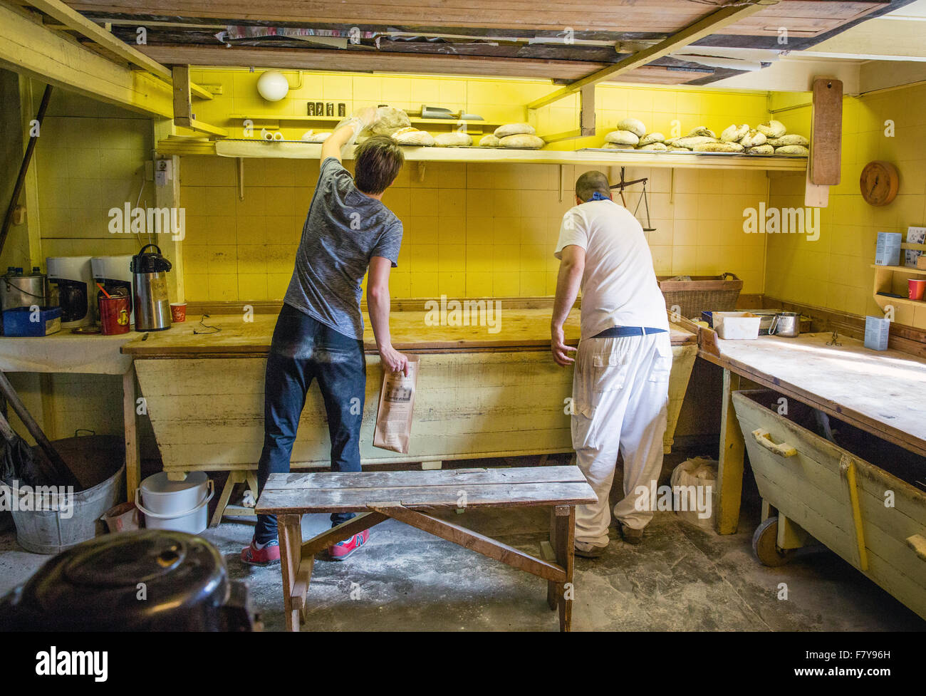 Baker at work making bred in the artisan bakery of ' A ' in the western Lofoten Islands Norway - Stock Image