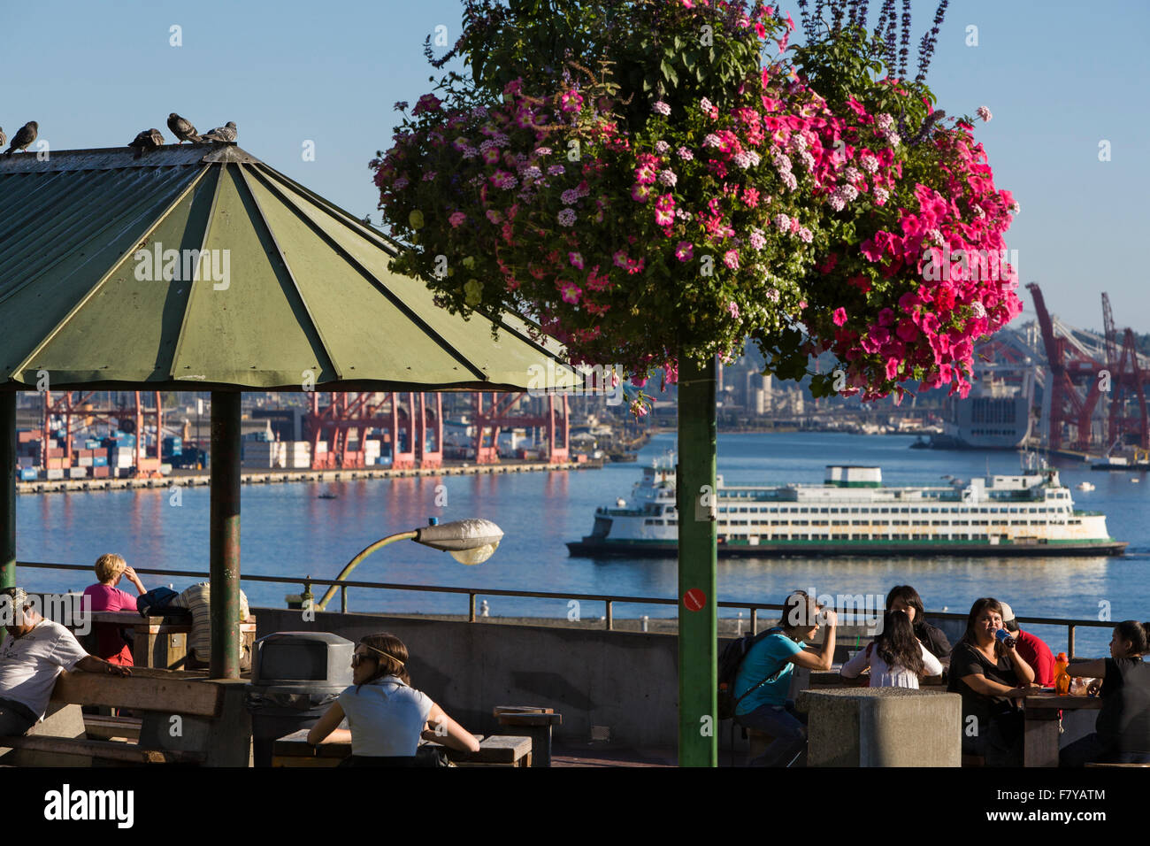 Victor Steinbreuck Park, Seattle, Washington, United States - Stock Image