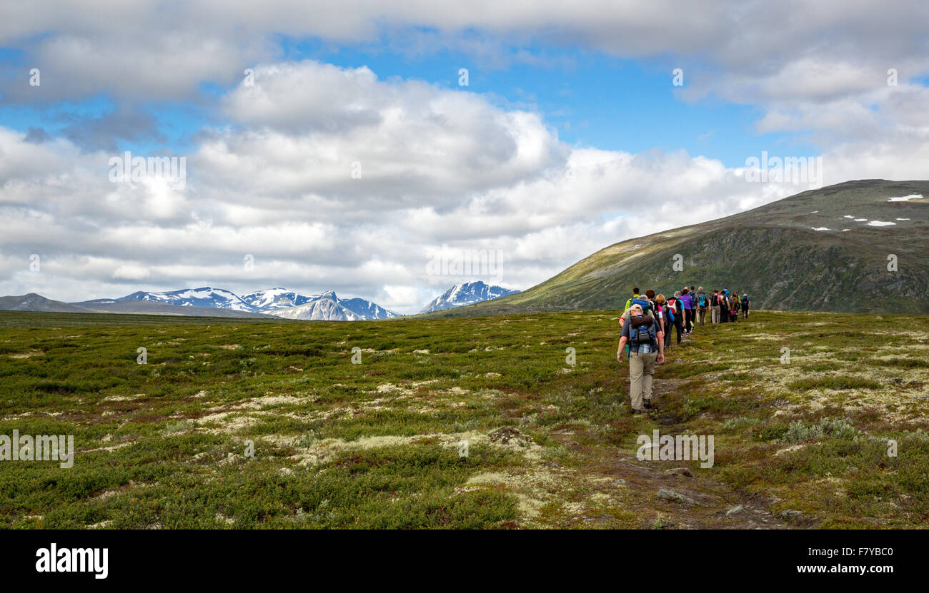 Long line of walkers on the Muskox safari across Dovrefjell in Norway's Oppland region - Stock Image