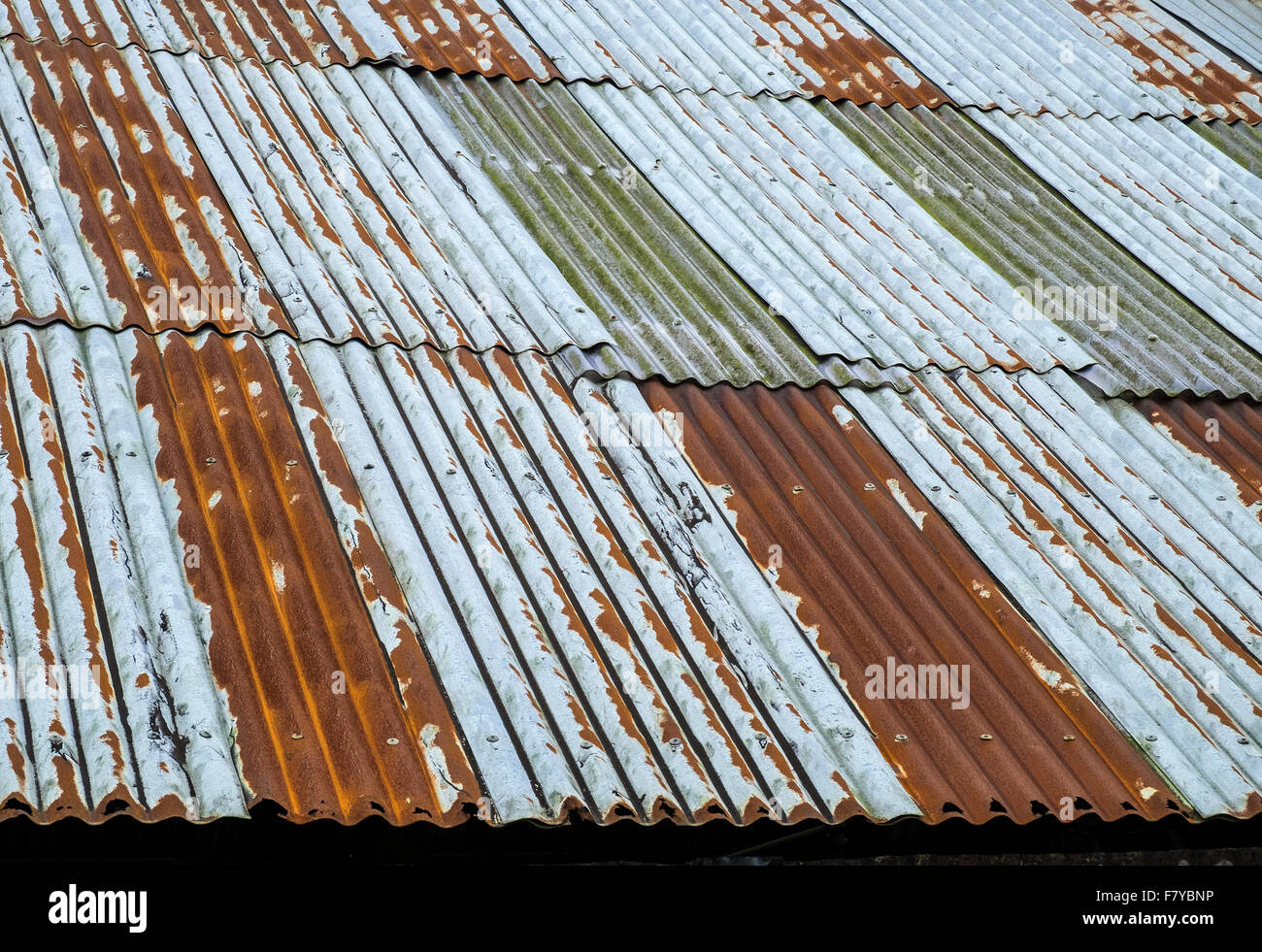 a roof made from corrugated iron sheeting - Stock Image