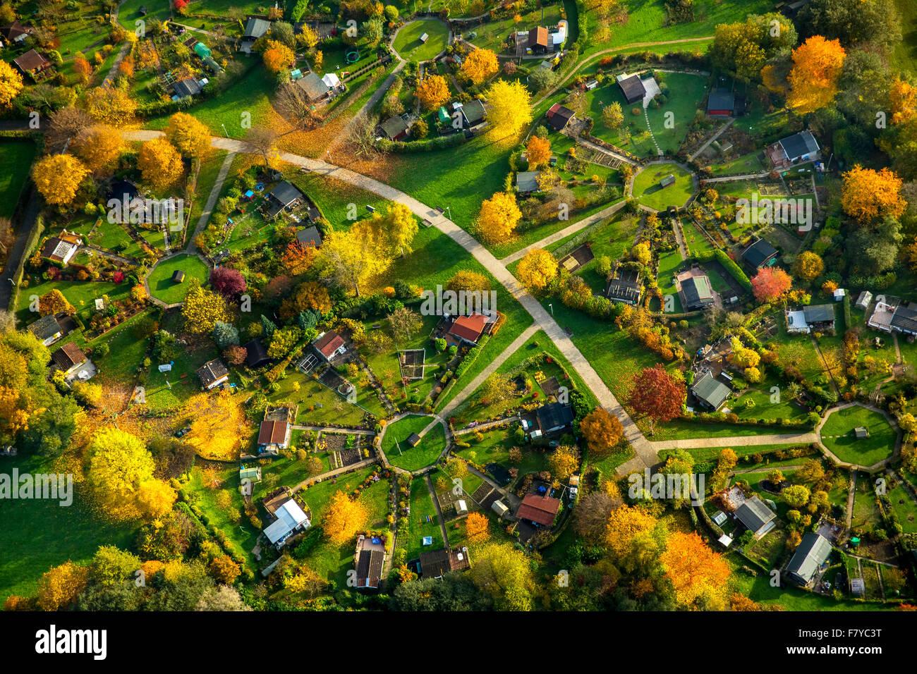 Circular allotment gardens, allotments on Heuweg, circular divisions, autumn, Witten-Stockum, Witten, Ruhr district - Stock Image