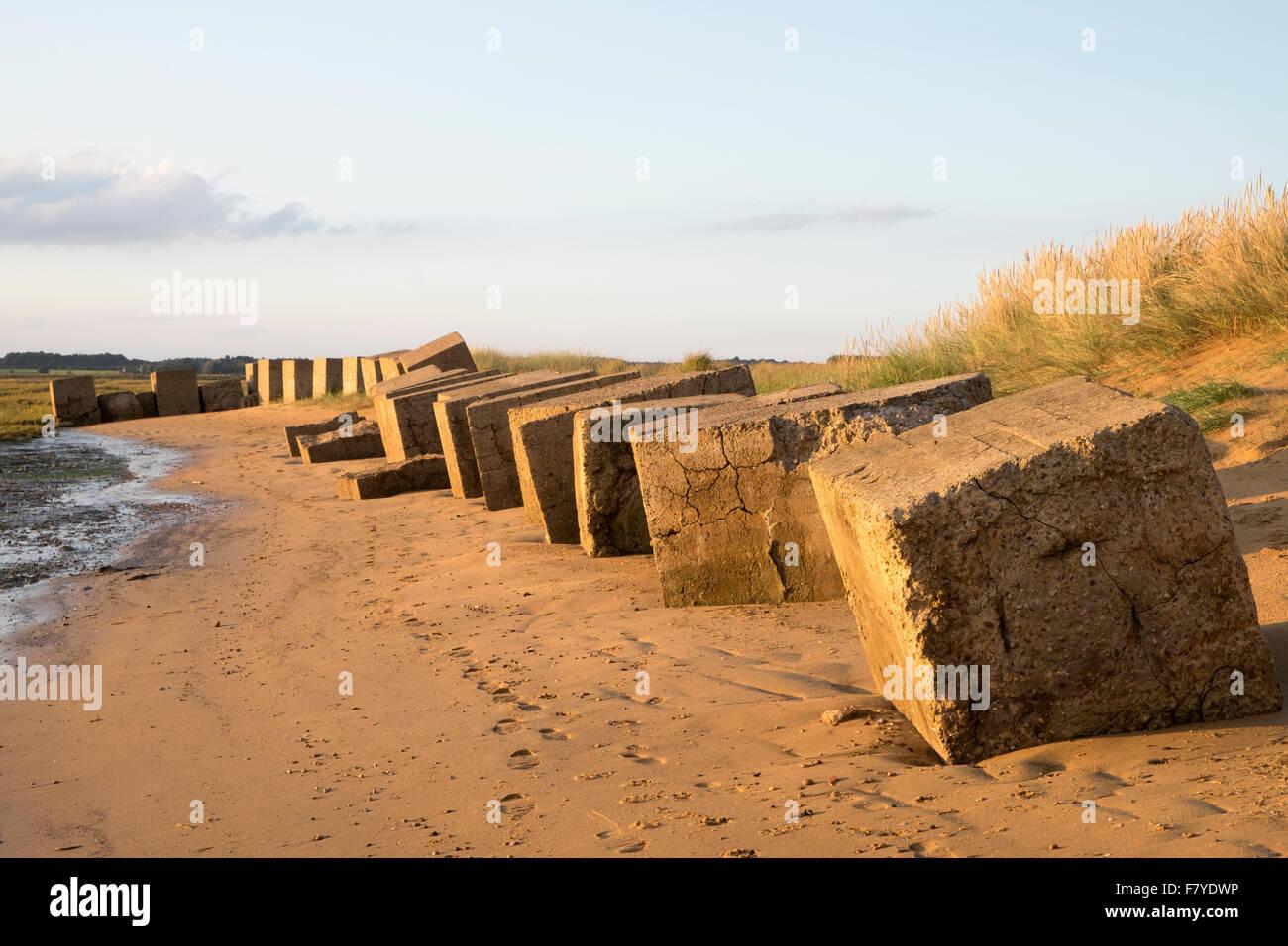 World War Two anti-invasion concrete blocks, river Deben, Bawdsey Ferry, Suffolk, UK. - Stock Image