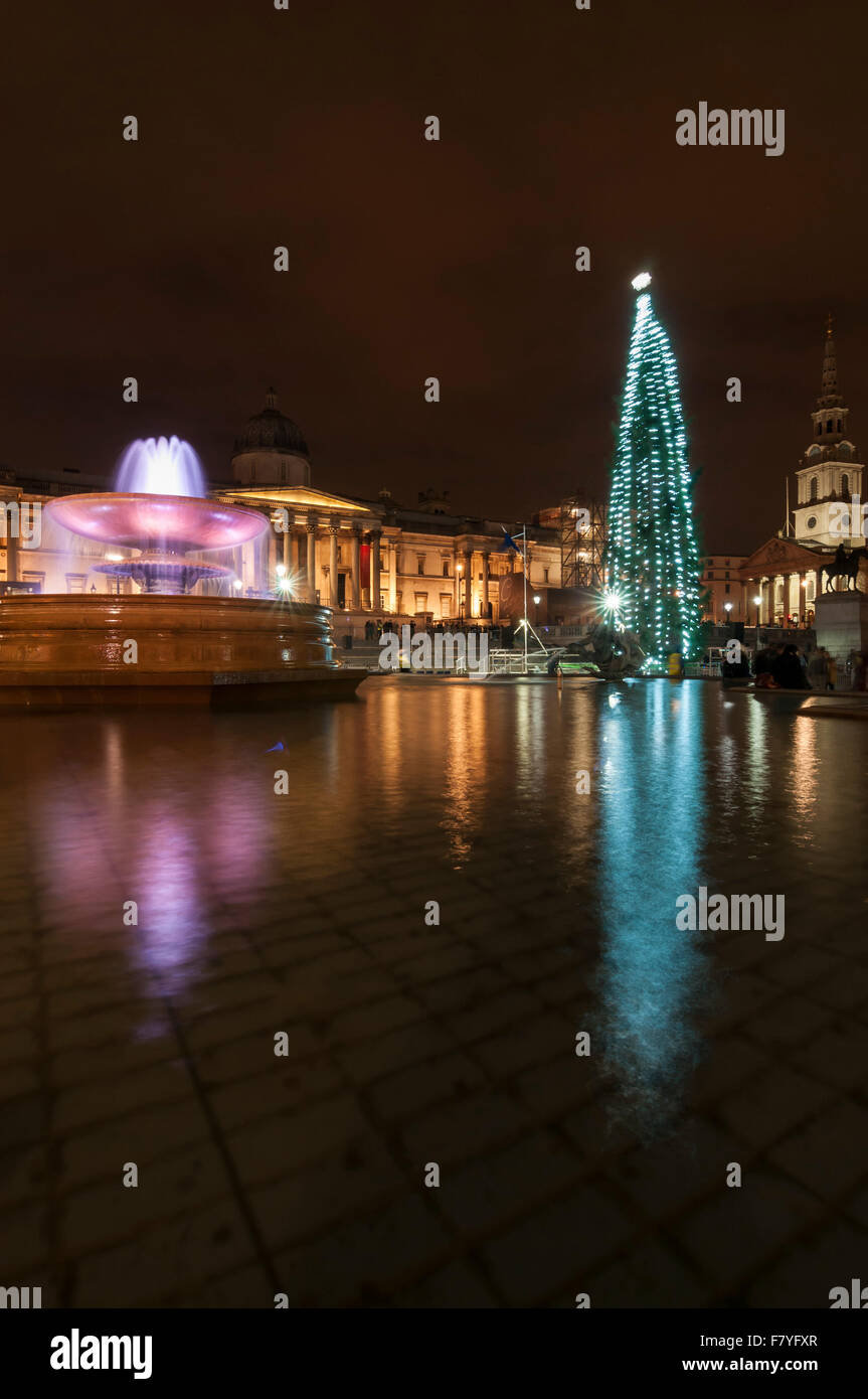 London, UK.  3 December 2015.  The newly lit Christmas tree in Trafalgar Square.  The Norwegian spruce tree is donated - Stock Image