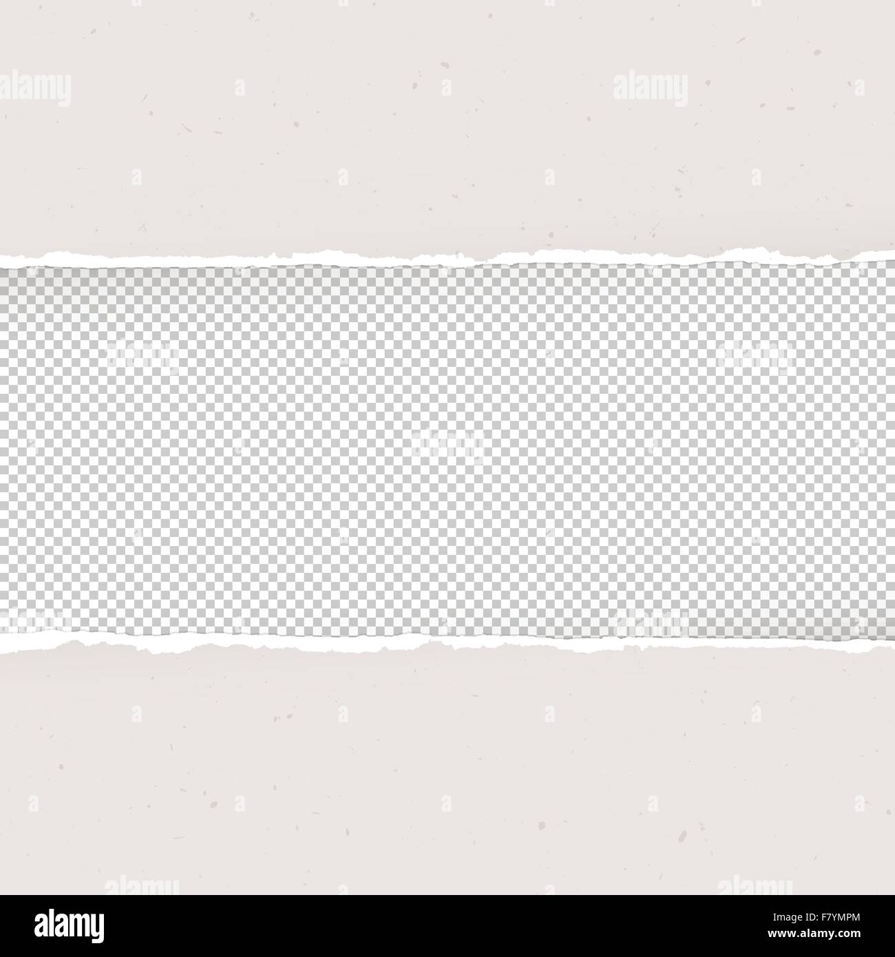torn paper on transparent background. design template, vector stock