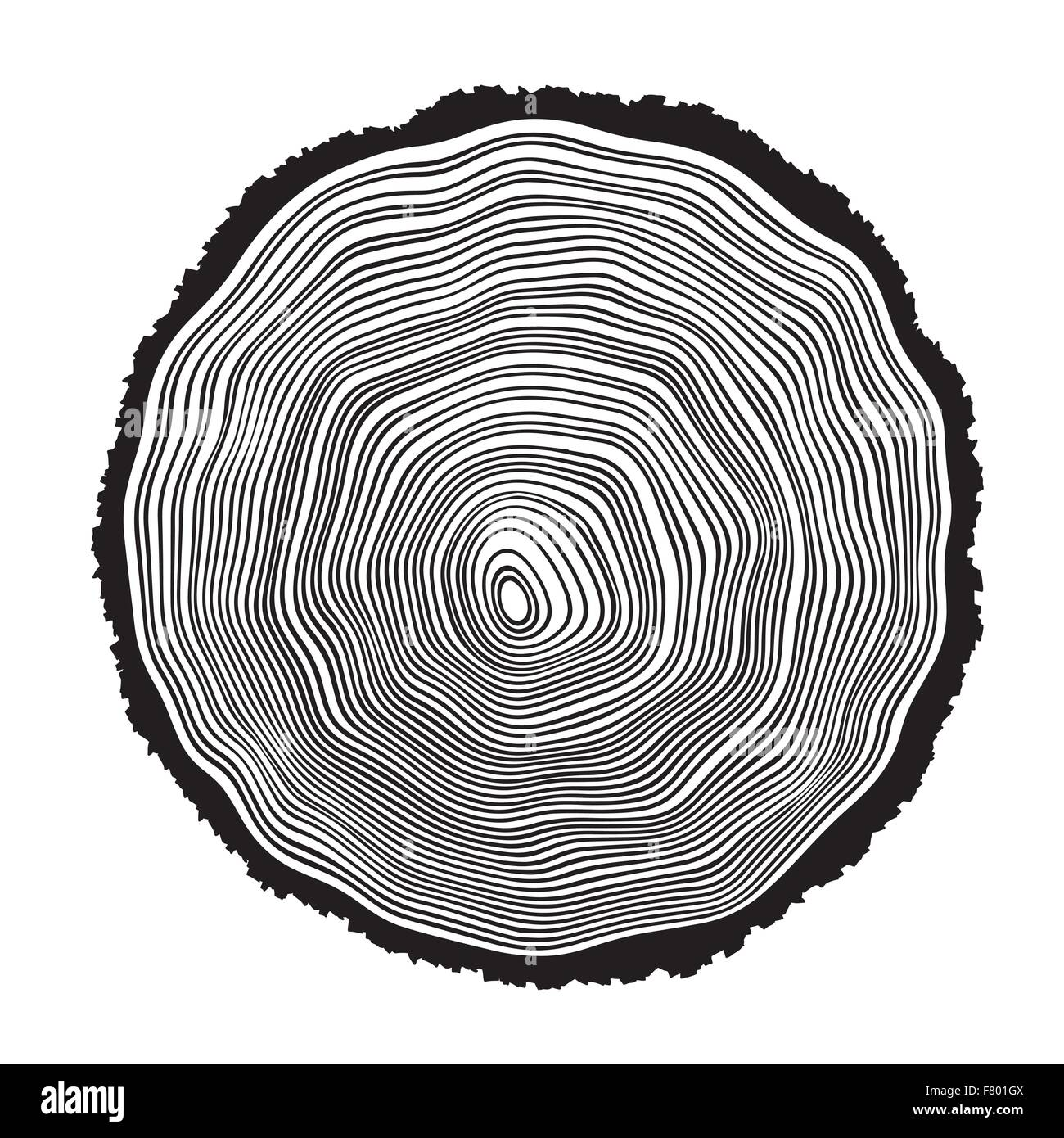 tree rings age stock photos amp tree rings age stock images