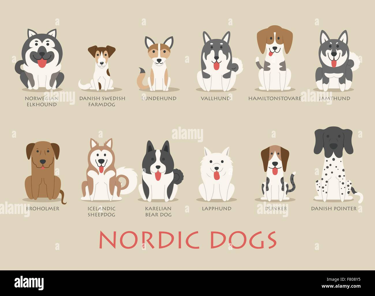 Set of nordic dogs - Stock Image
