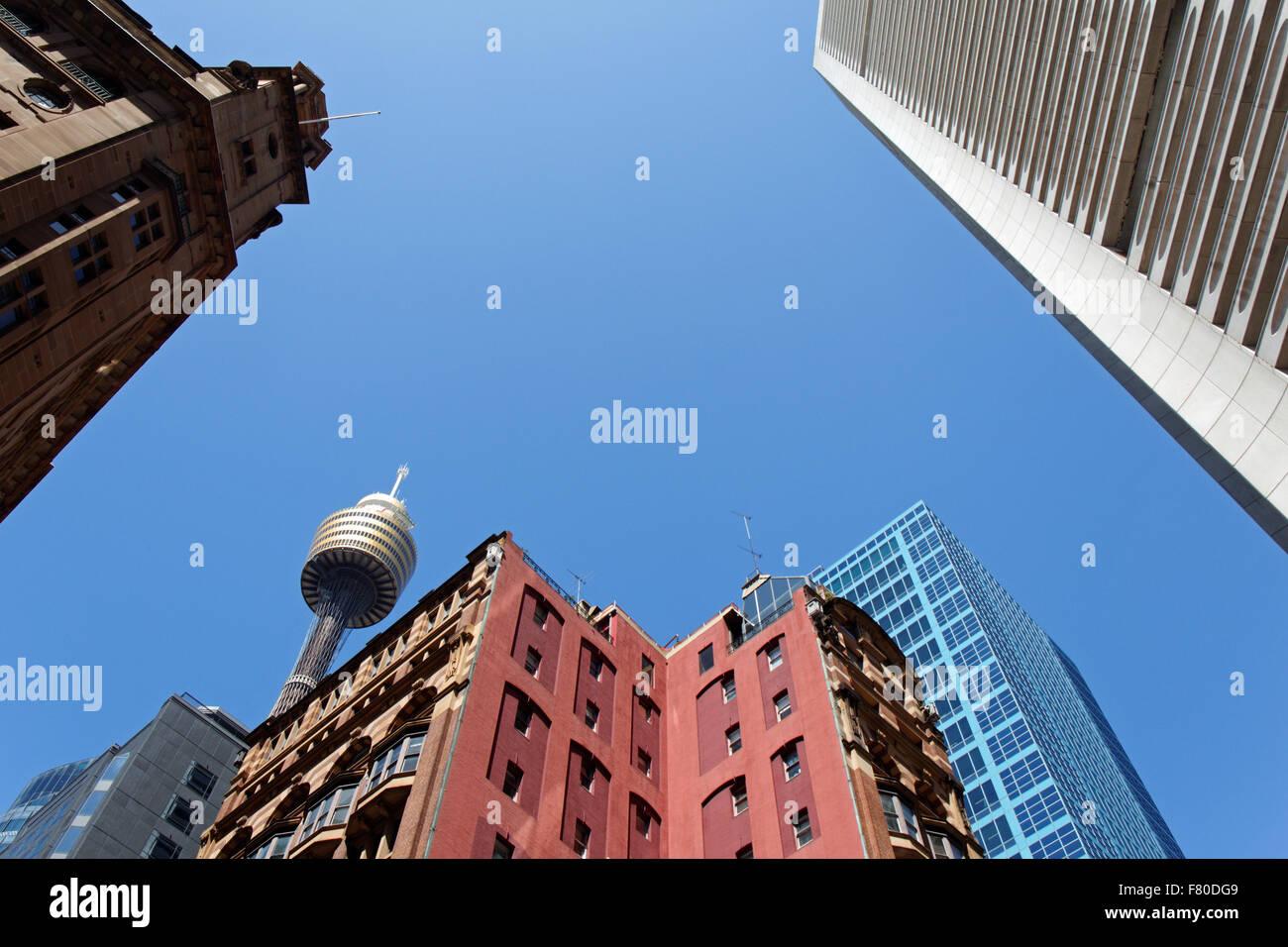 Sydney Tower I Sydney I Australia - Stock Image
