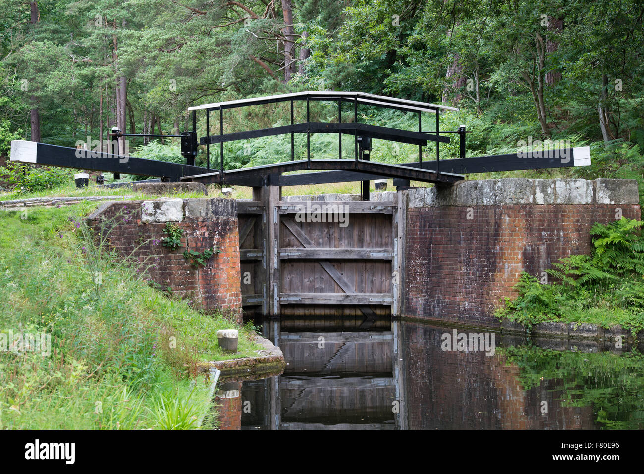Canal lock gate on the Basingstoke canal near Deepcut , Surrey, England - Stock Image
